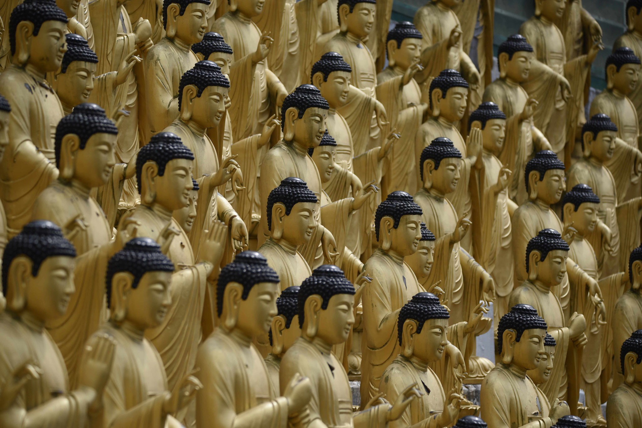 Eine Armee an Buddastatuen