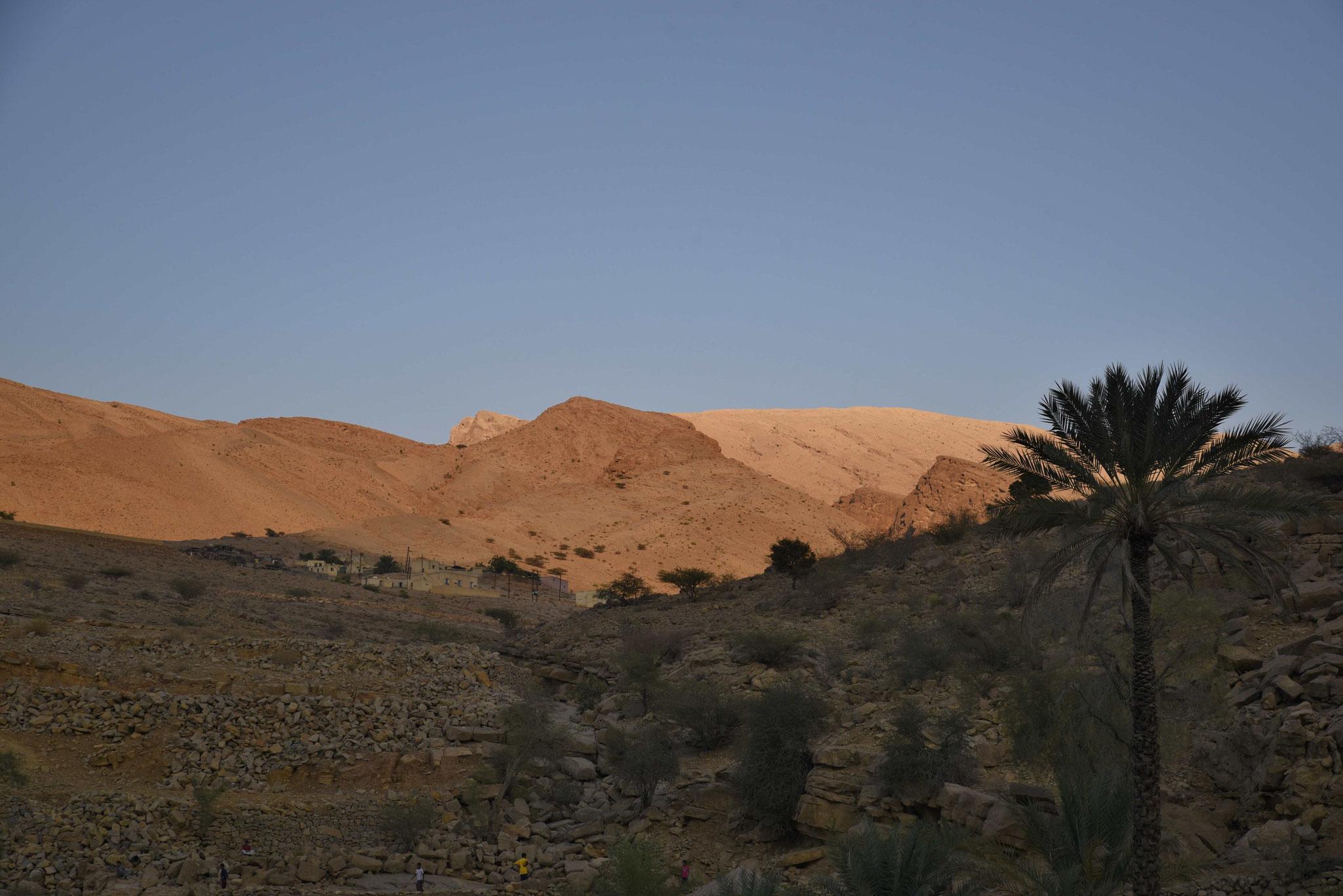 Nur wenige Schritte und das grüne Band geht in Steinwüste über