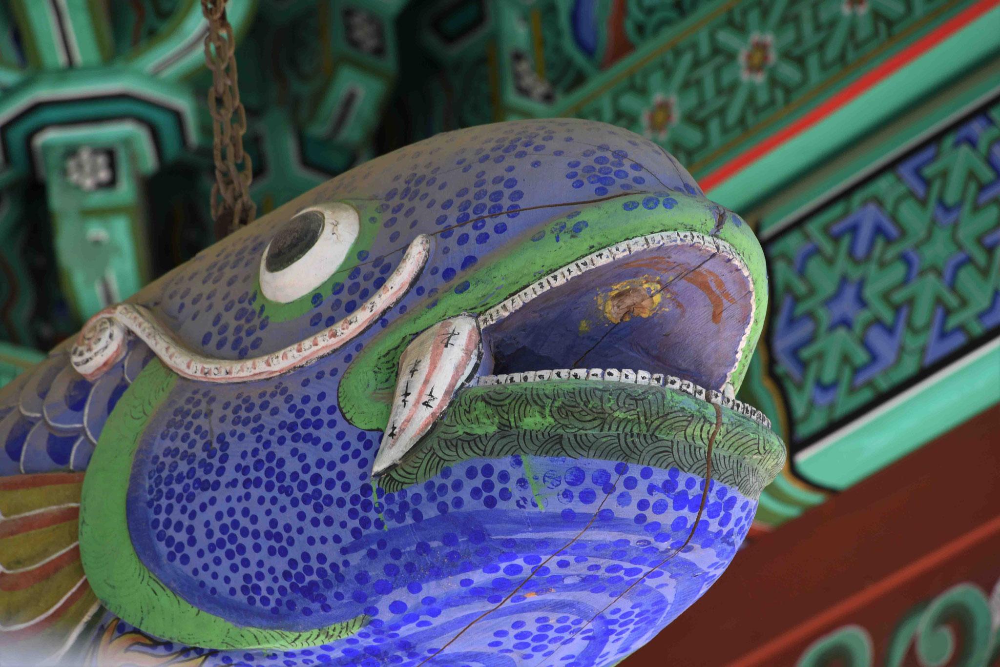 Kopf des Glück-Fisches
