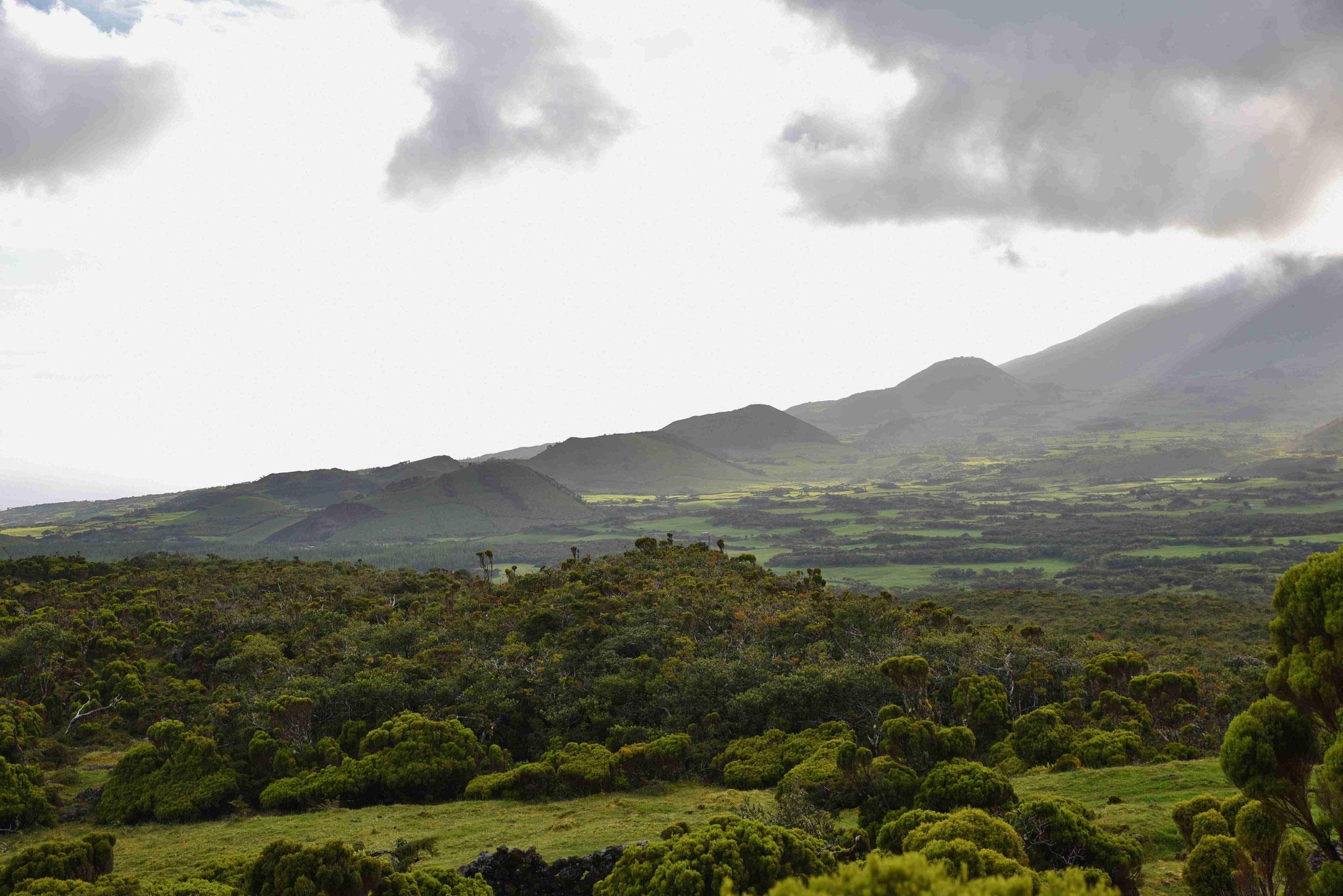 Vulkanhügel im Landesinneren