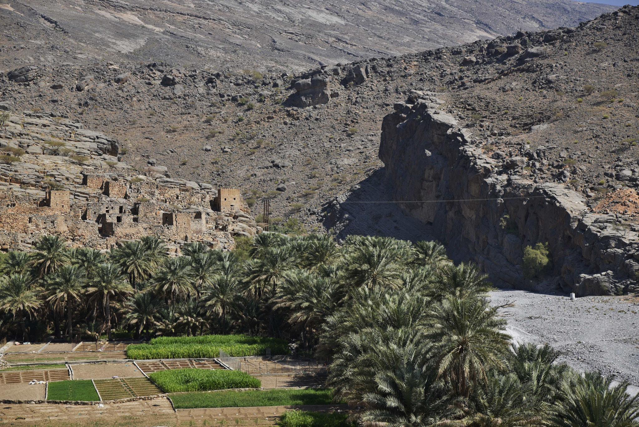 Auf dem Weg zum Jebel Shams I