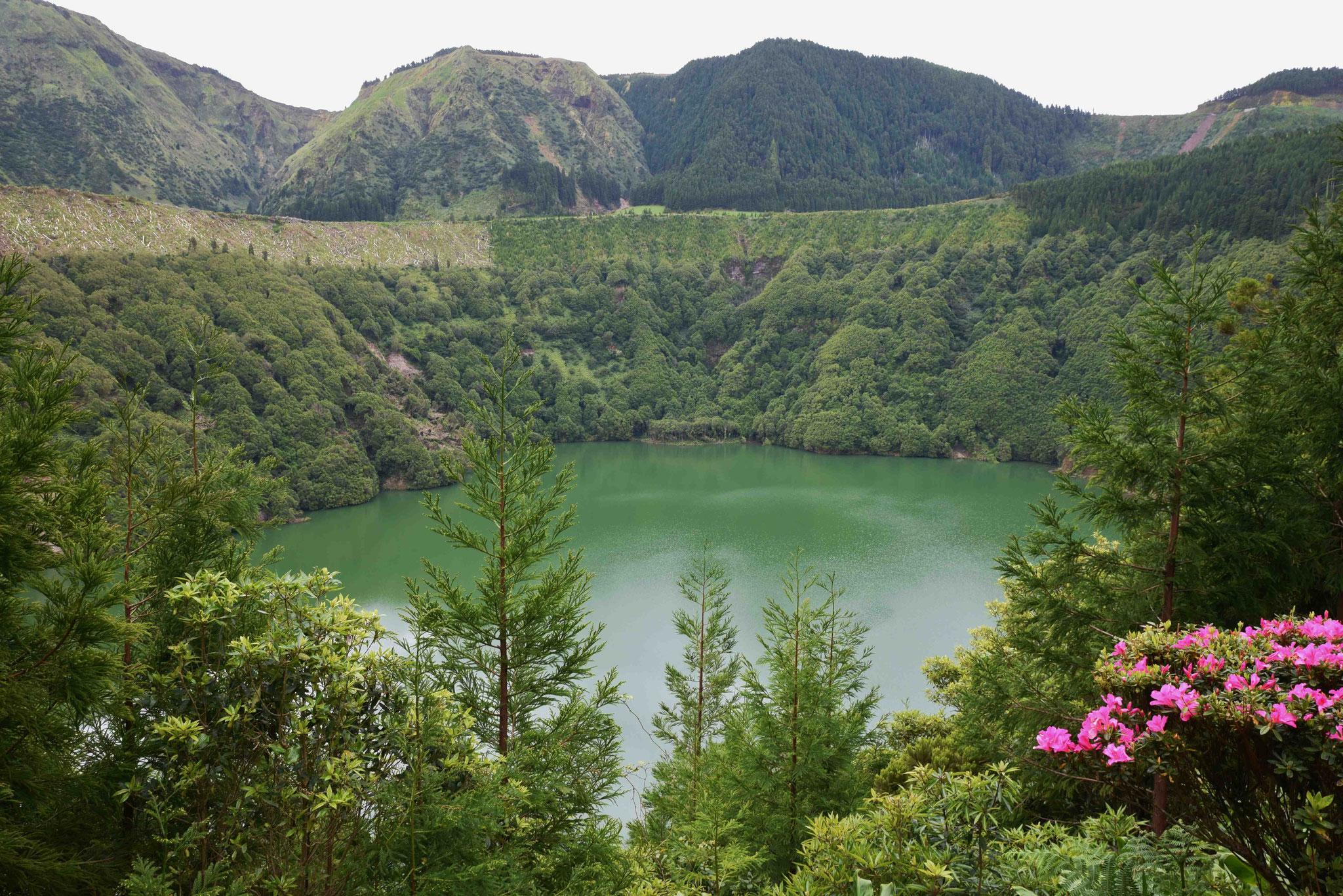 Lagoa Verde - grüner See