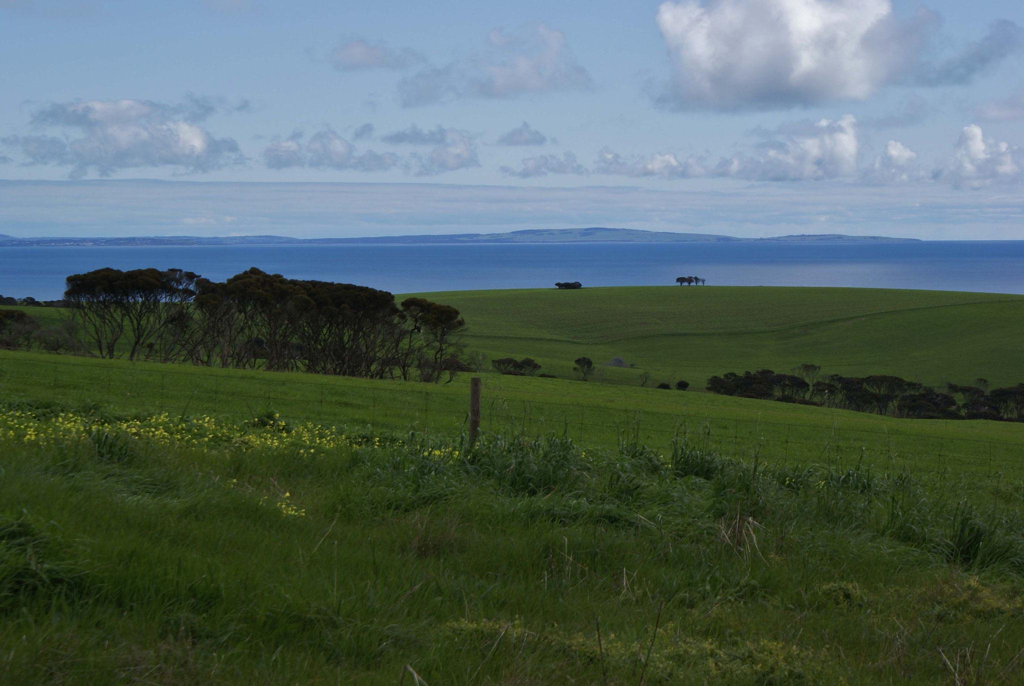 Blick von Kangaroo Island auf das Festland