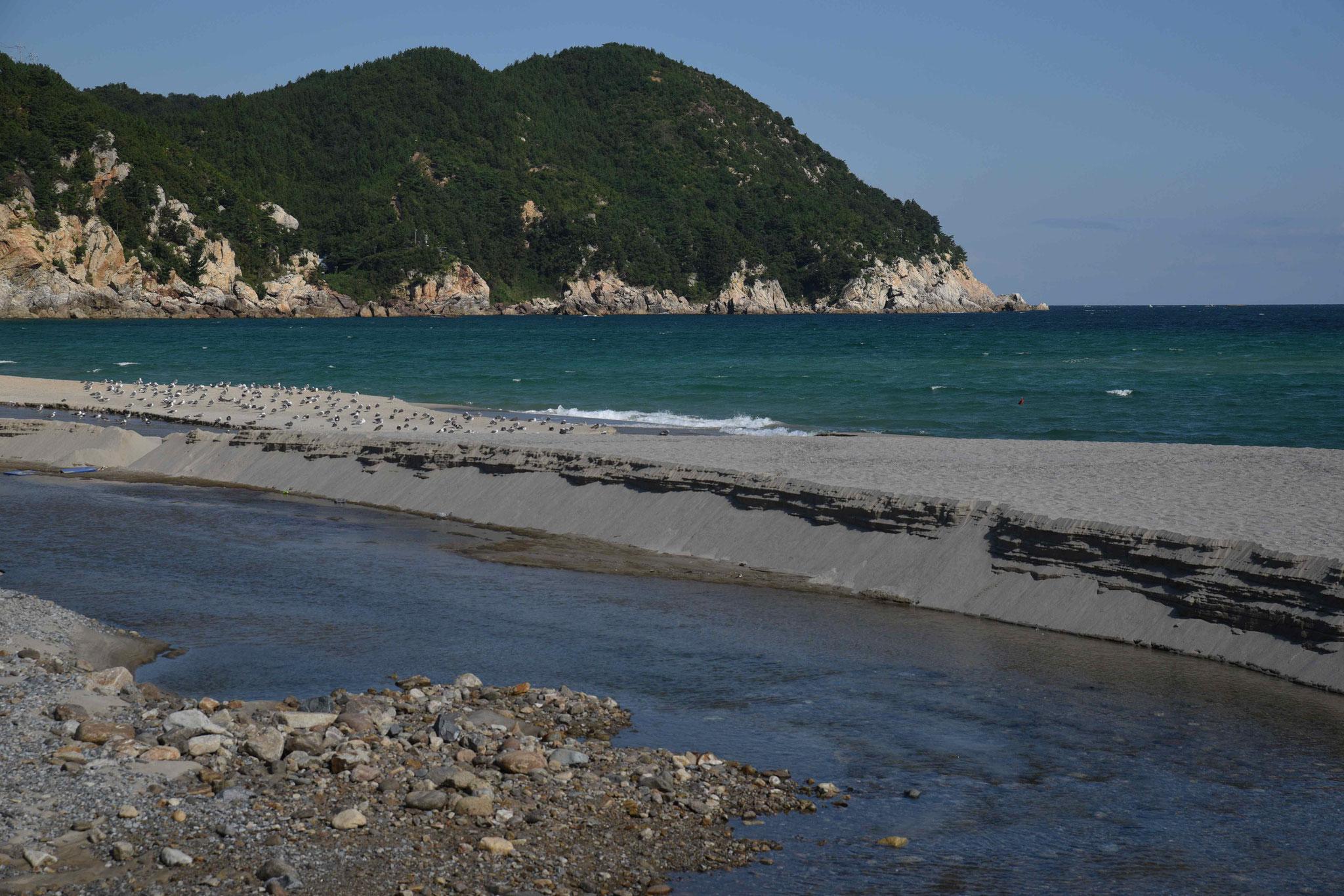 Küste bei Samcheok