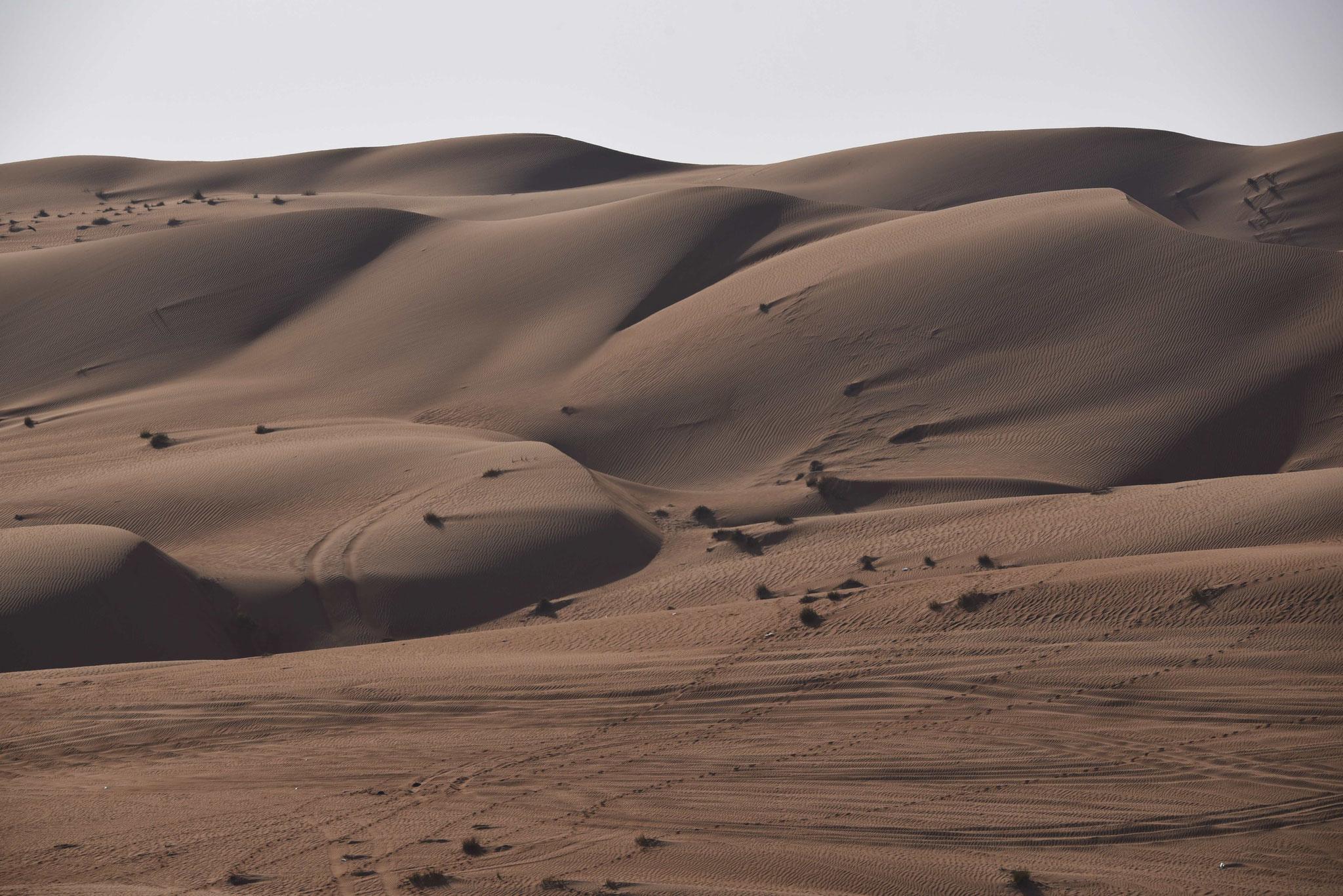 Sandünen IV