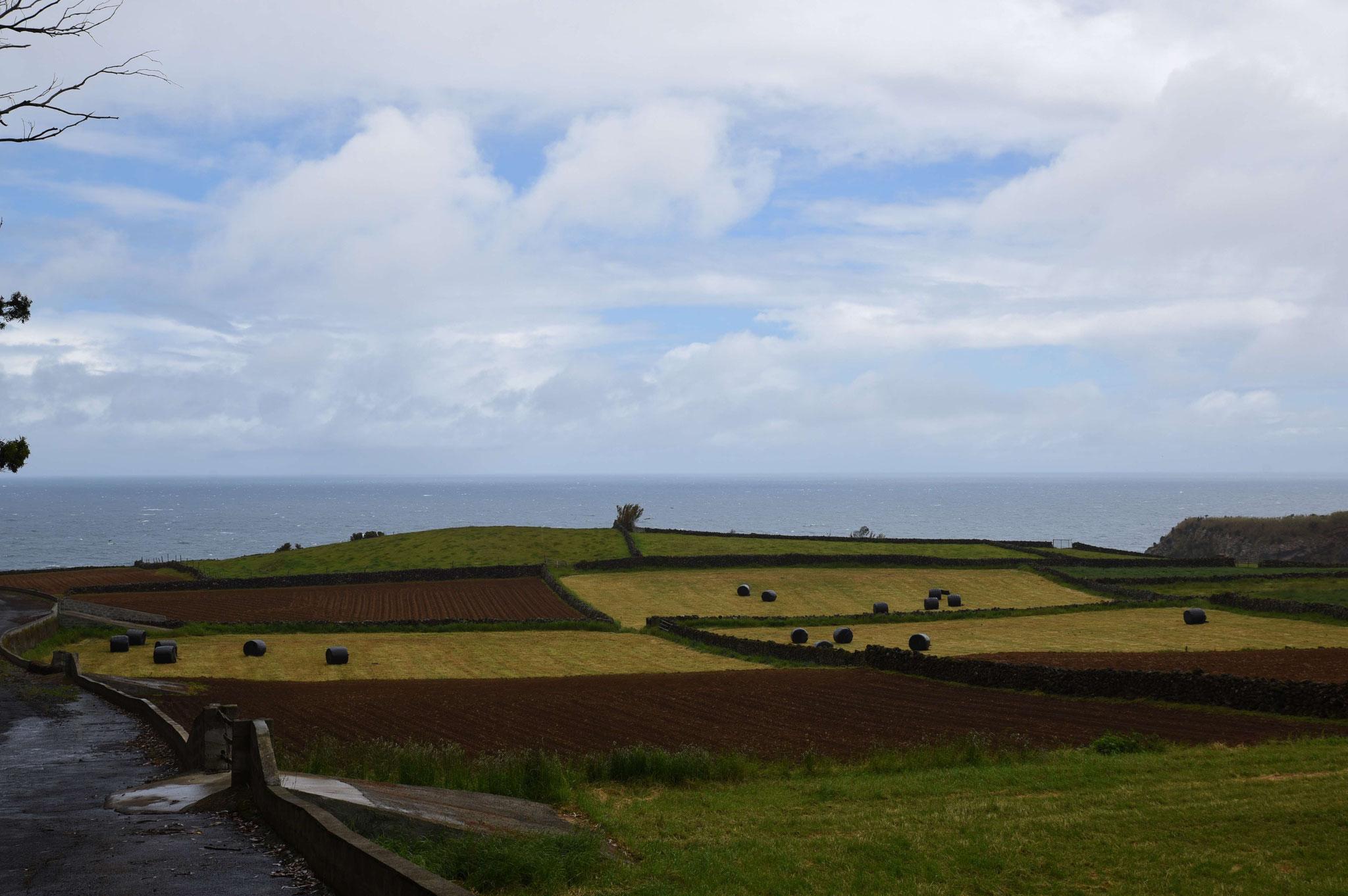 Ackerbau und Viehzucht überall auf der Insel