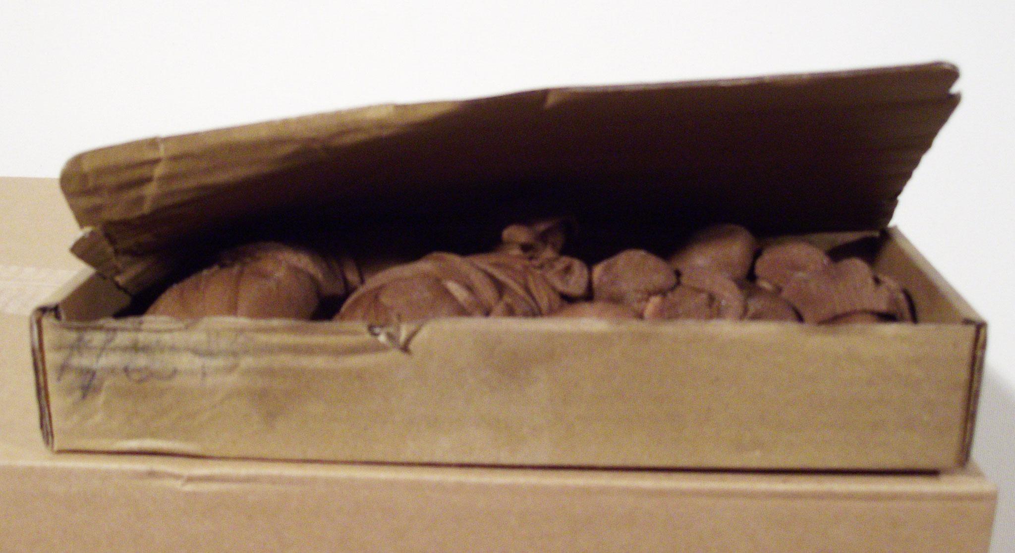 Nest / Polyamid auf Karton / 11 cm x 26 cm x 11 cm / 2010 / MWV S004