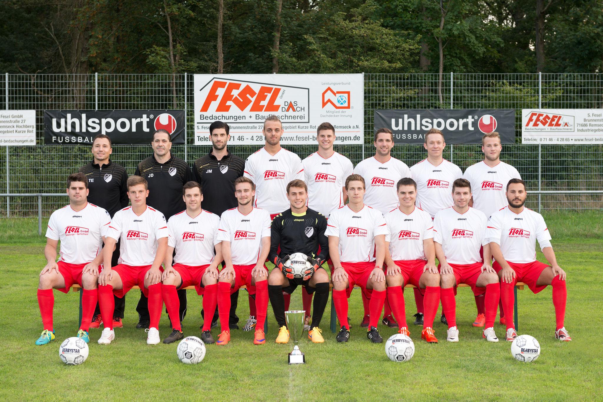 2. Mannschaft - Saison 2015 / 2016