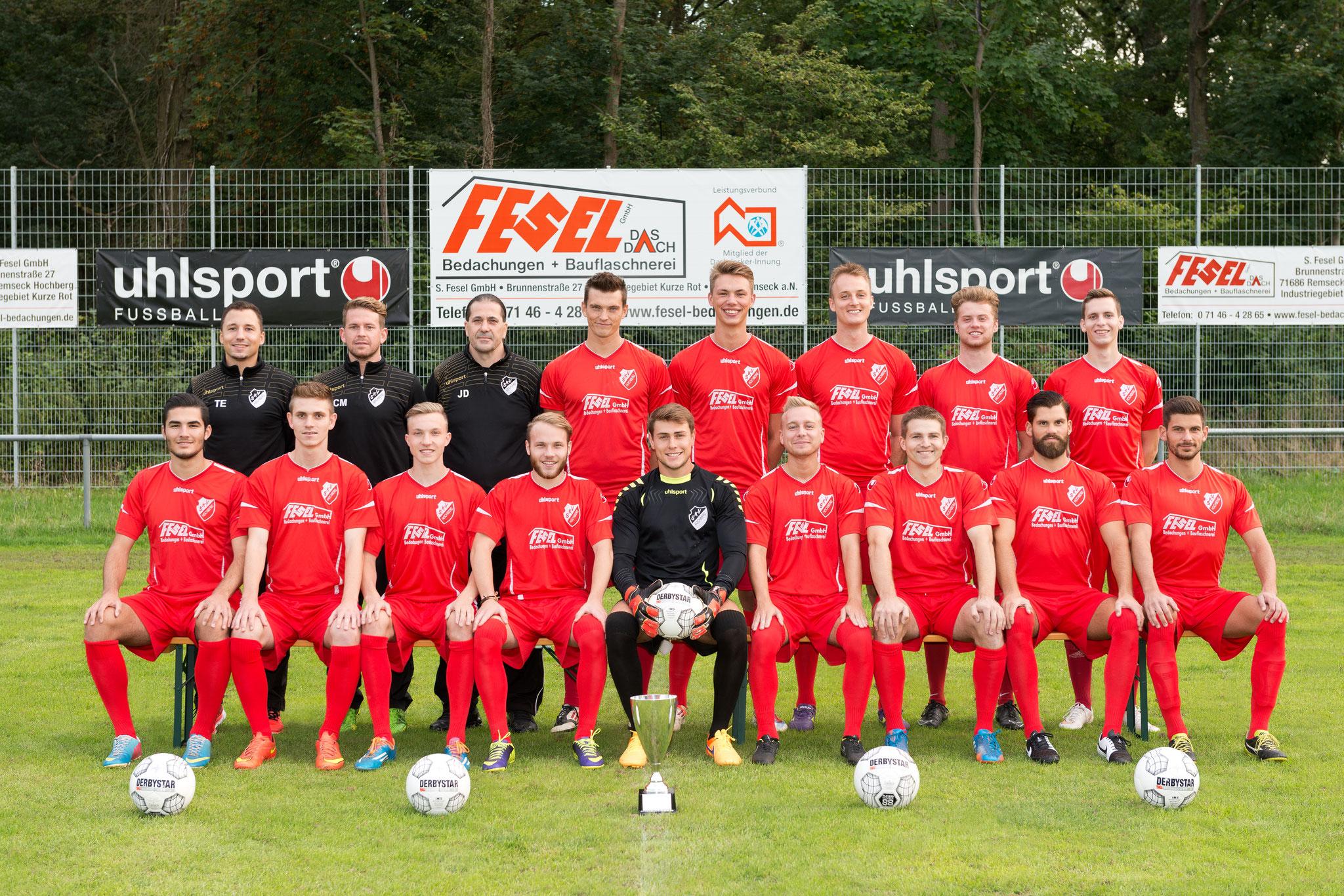 1. Mannschaft - Saison 2015 / 2016