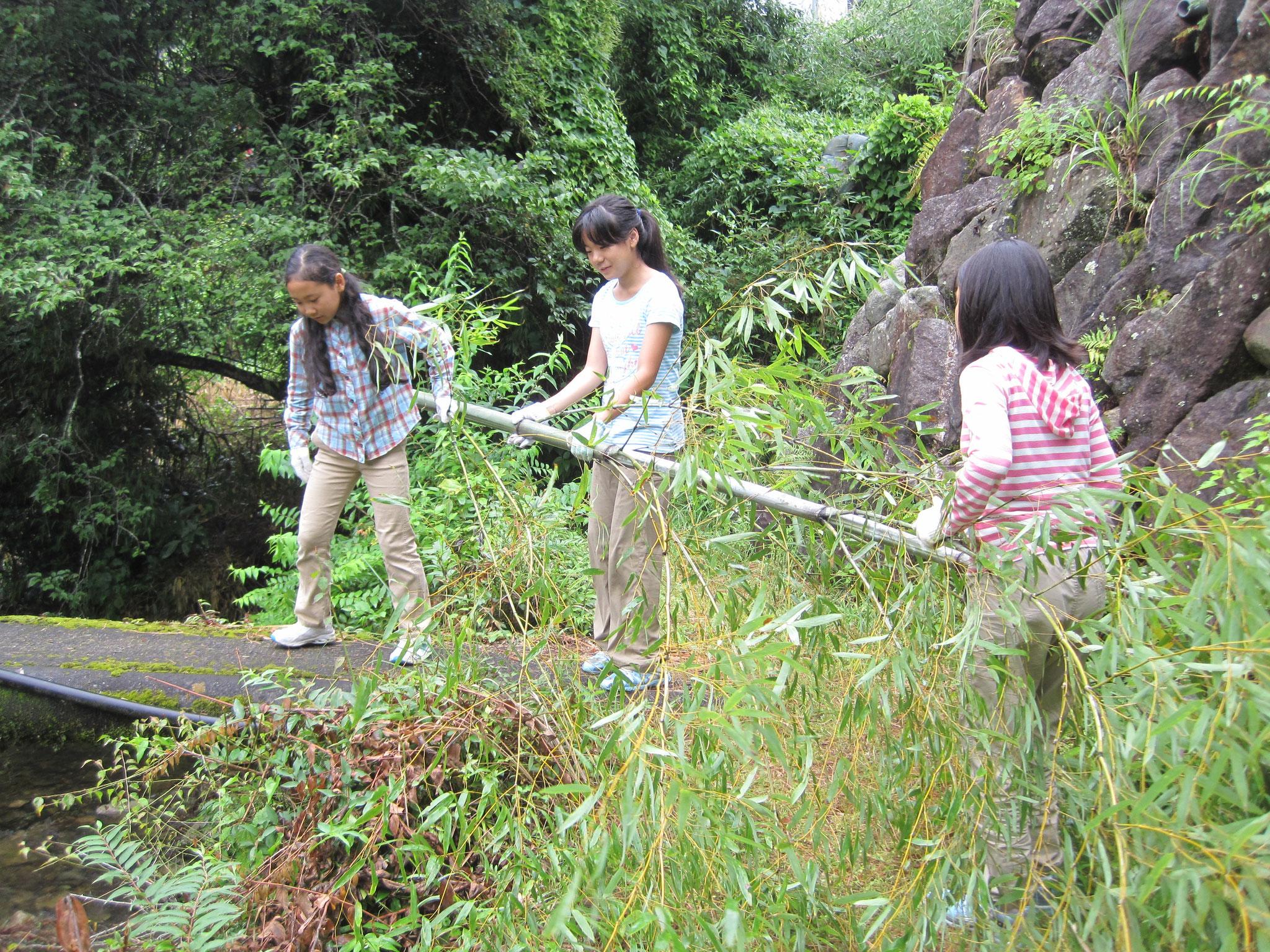 昼食の流しそうめんの竹を切り出します。川に落ちないように気をつけて。
