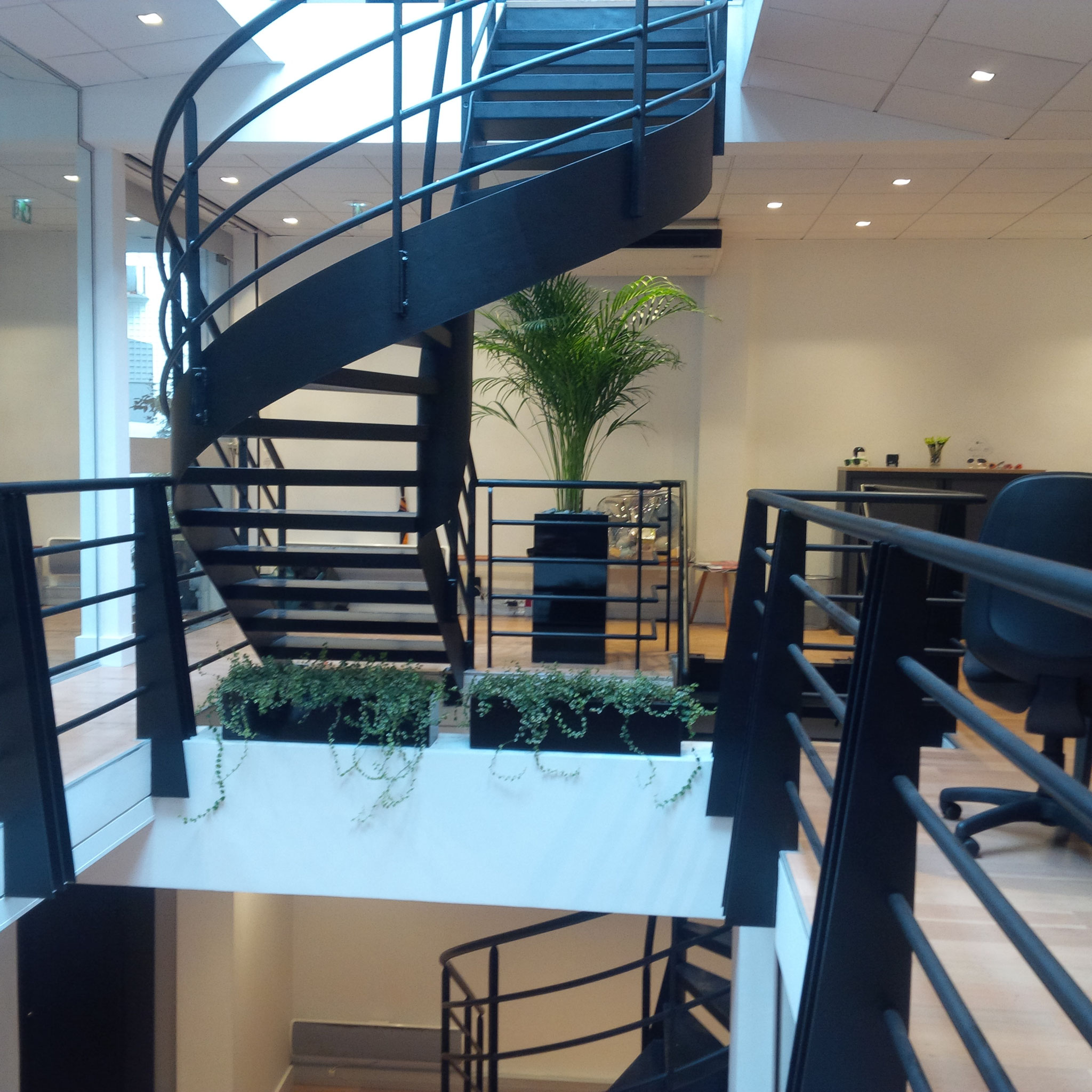 Paysagiste d'intérieur: location de plantes pour les bureaux d'une start up Parisienne