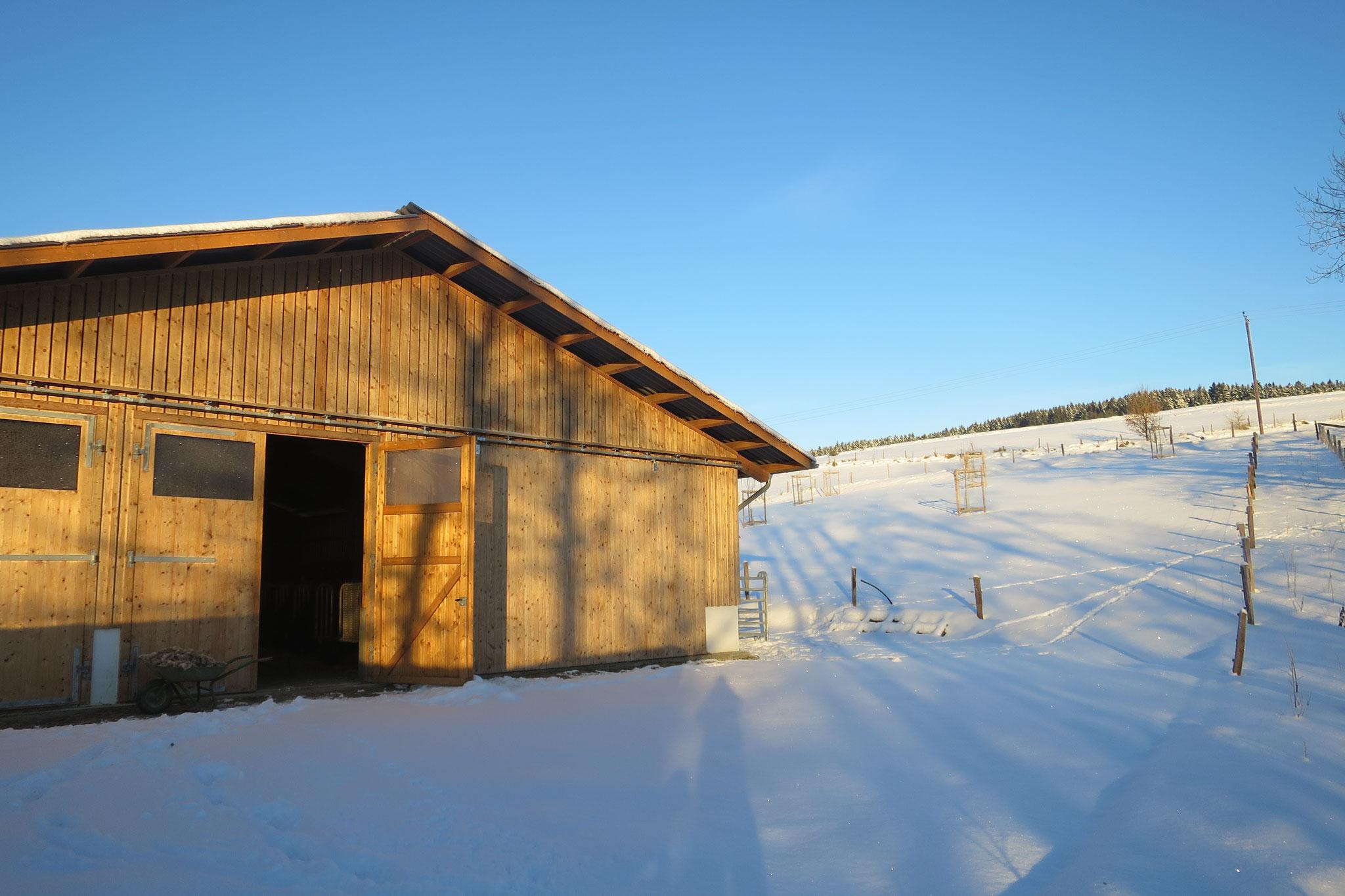 Januar - Unser Stall im Schnee