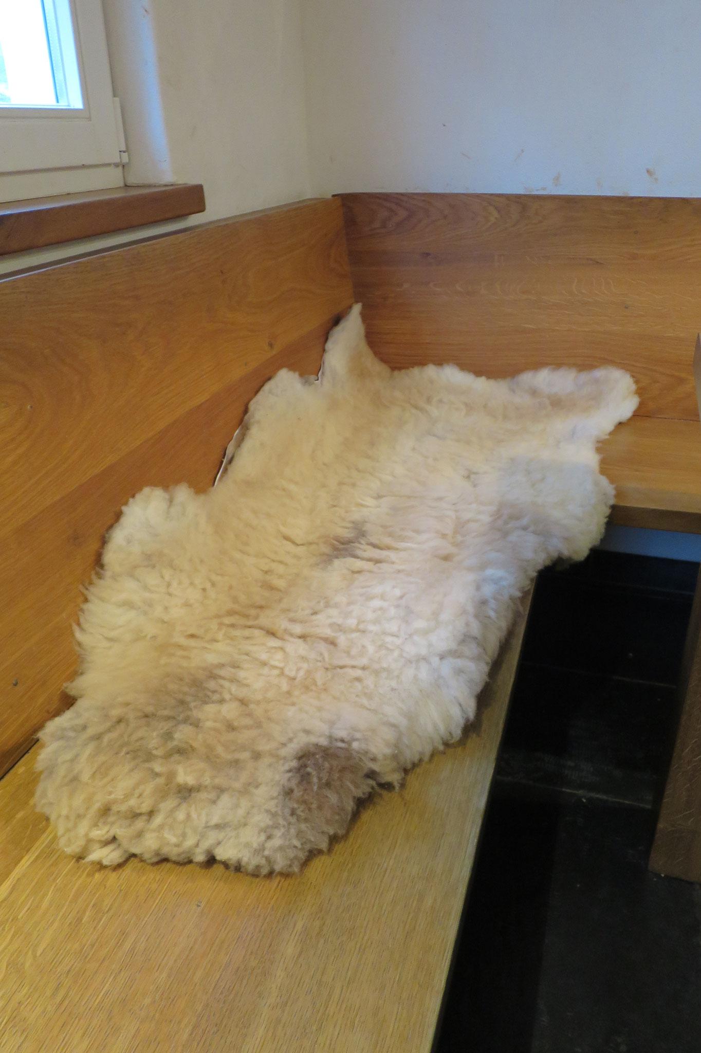 November - Unsere Lammfelle sind aus der Gerberei zurück