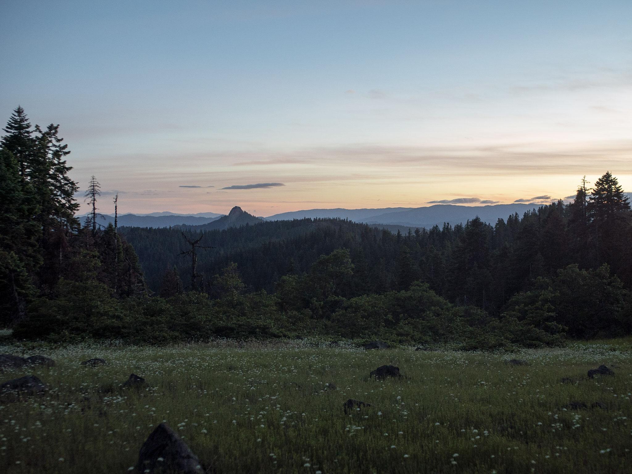 "Evening Twilight, Cascade-Siskiyou National Monument, Jackson County, Oregon, 2019. Inkjet print, 34 x 44"", edition of 11"