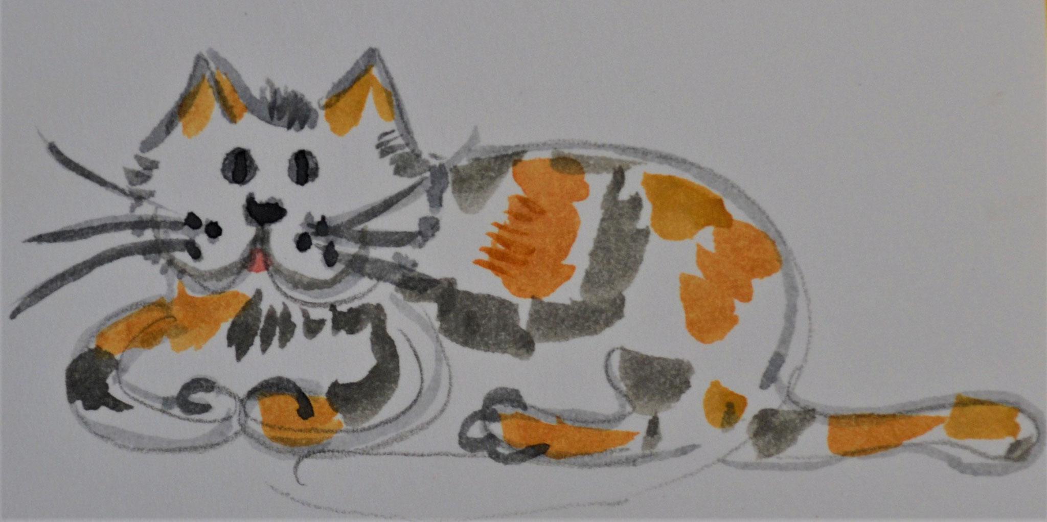 Katze gestreift