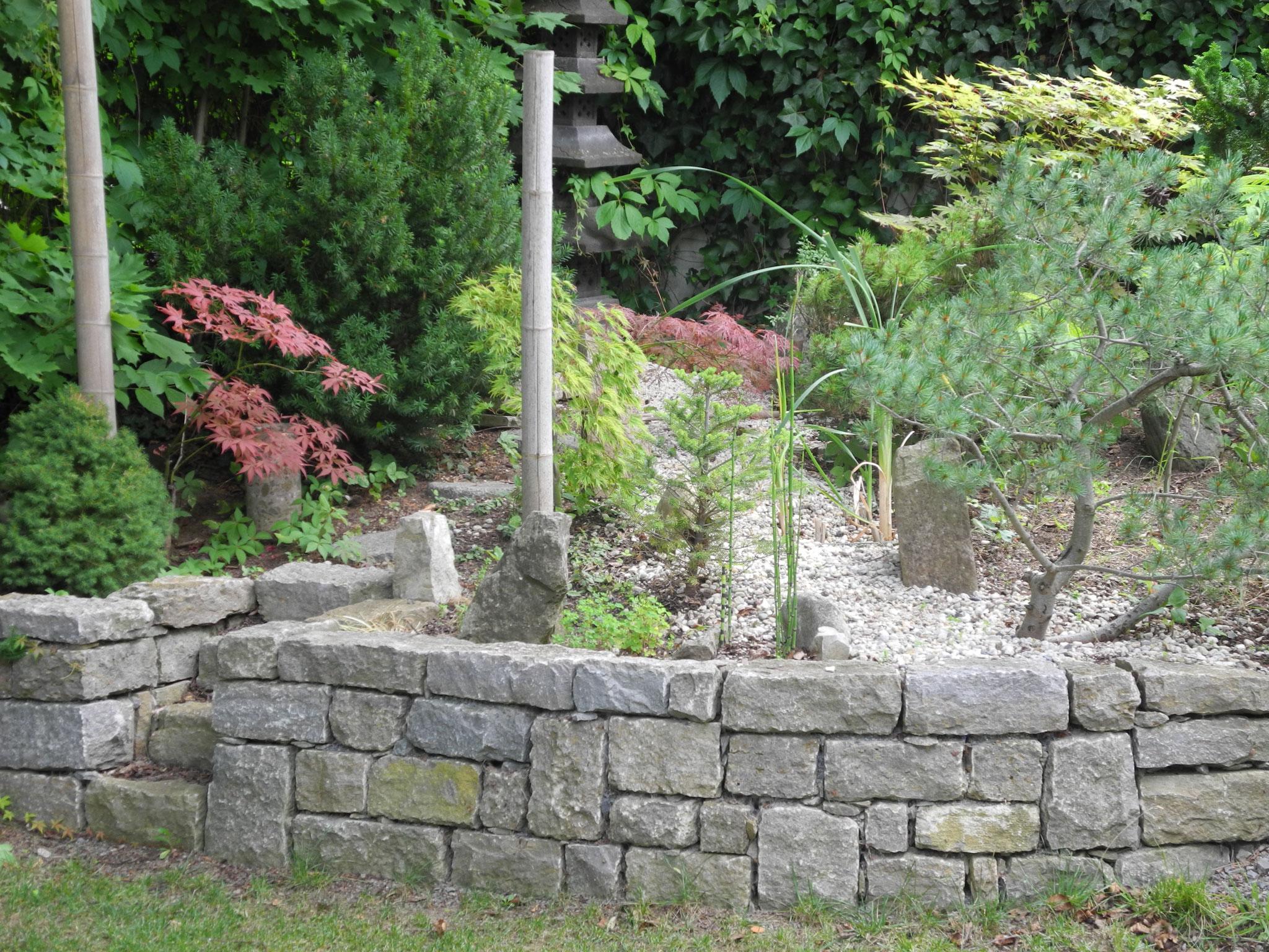Natursteinmauer/Zengarten