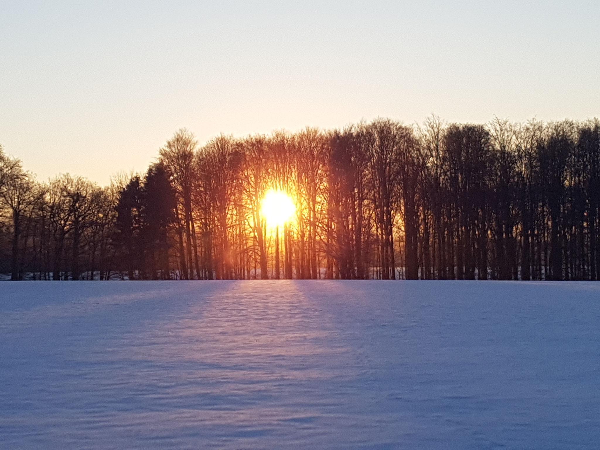 """Sonnenaufgang"""