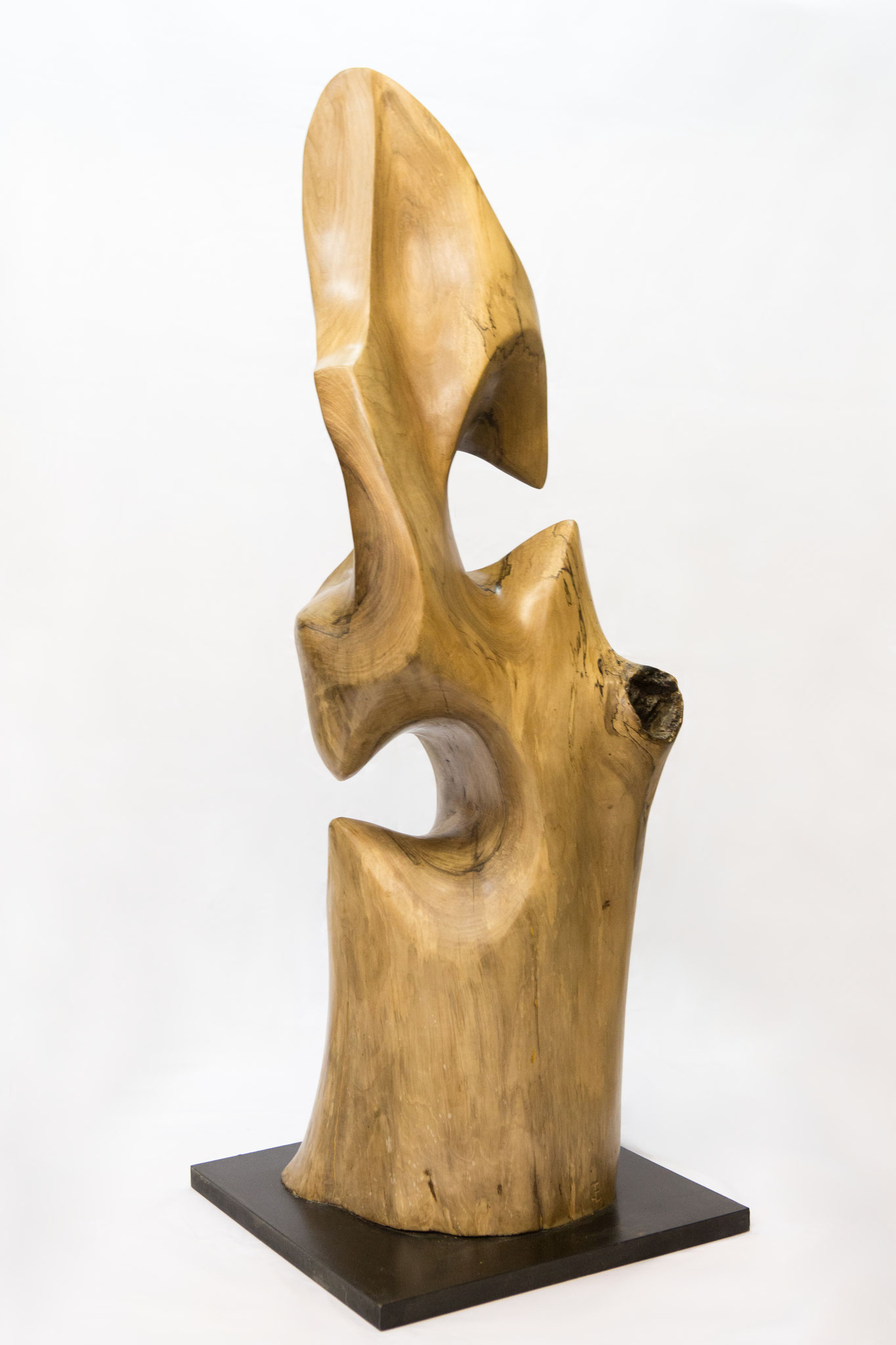 """ Léviathan ""   ( noyer ) 130 cm"