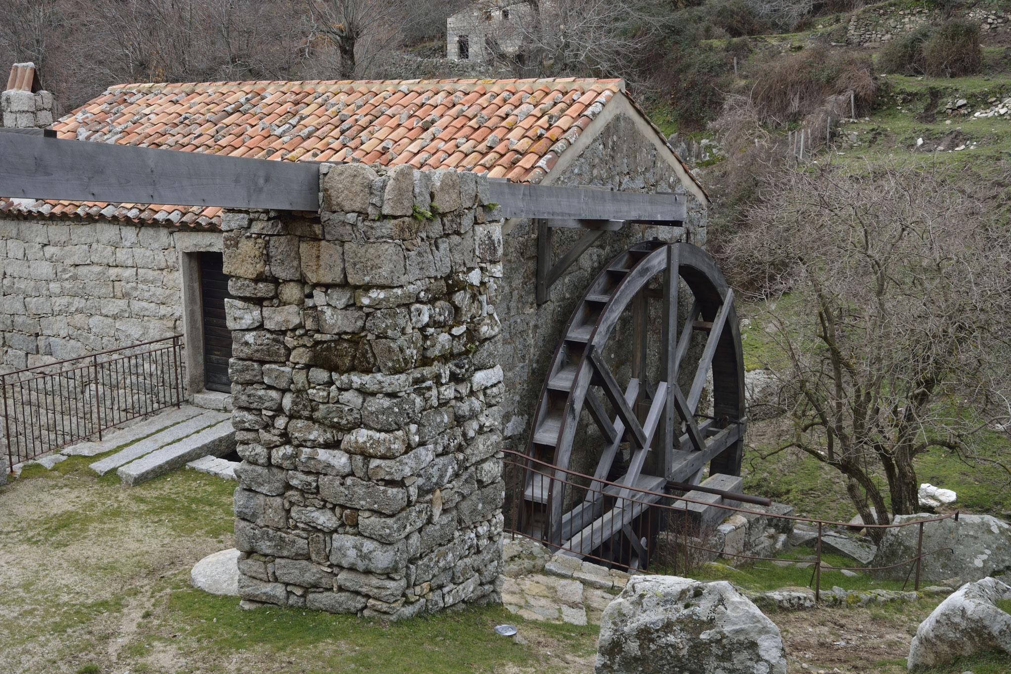Moulin à Serra di Scopamene