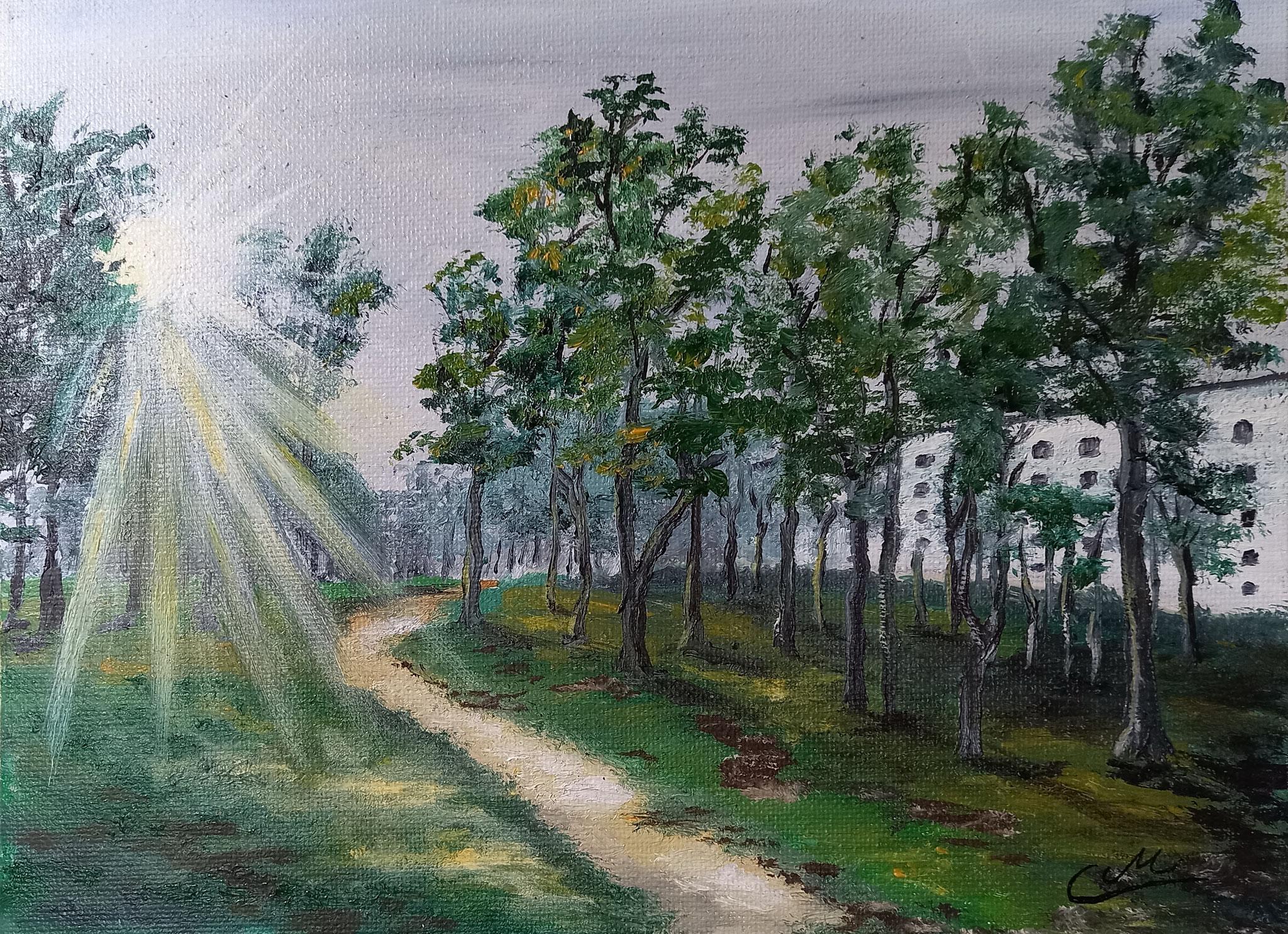 Proraer Heide