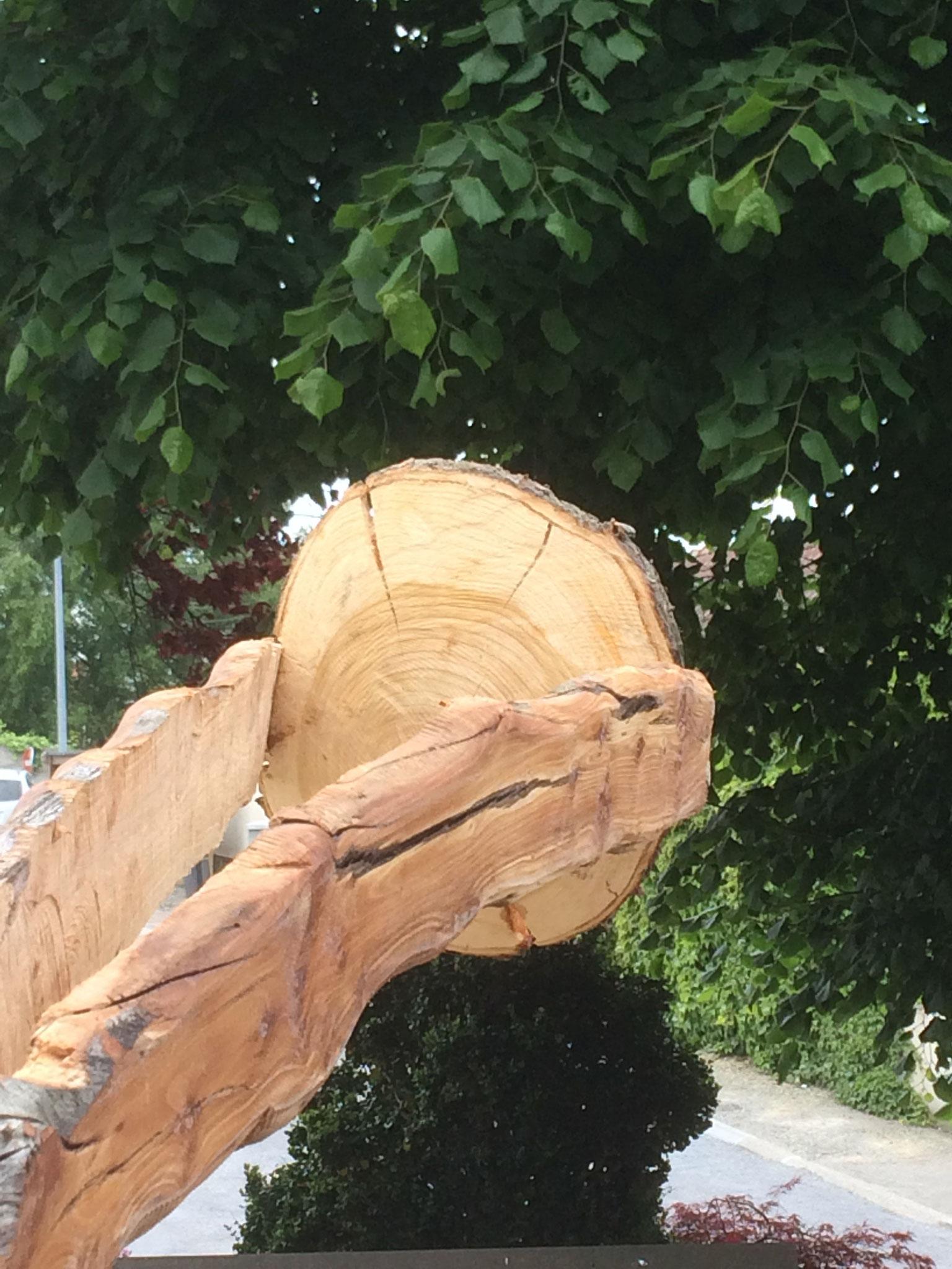"""""""L'arbre de vie"""", Xavier Rijs - Saint-Jean-des-Champs - Parcours 2019"""