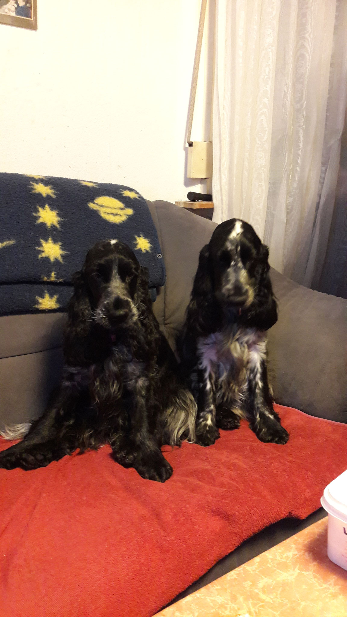 Ayla und Betty