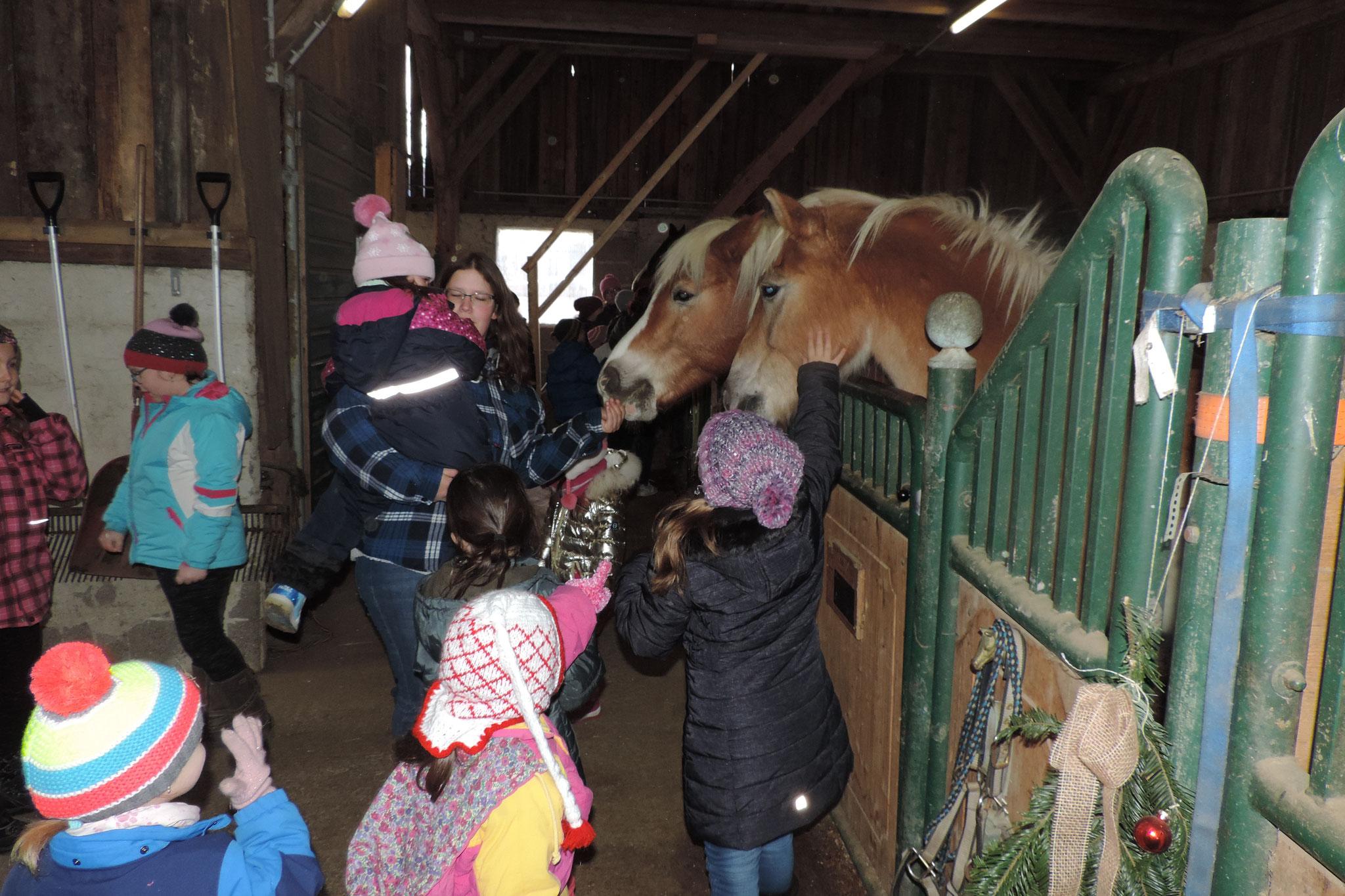 Verabschieden der Pferde in die Winterpause