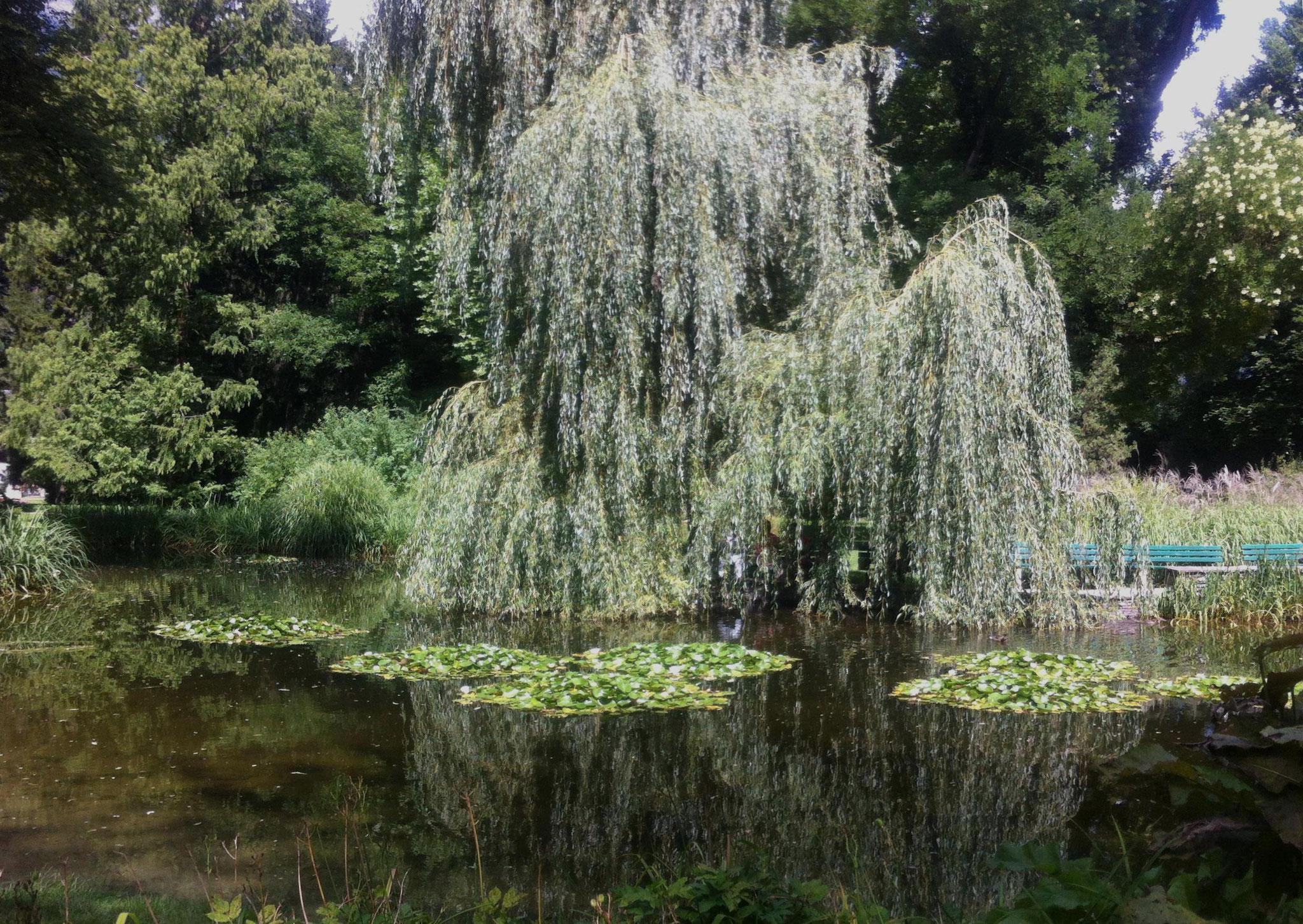 im Hofgarten - Innsbruck