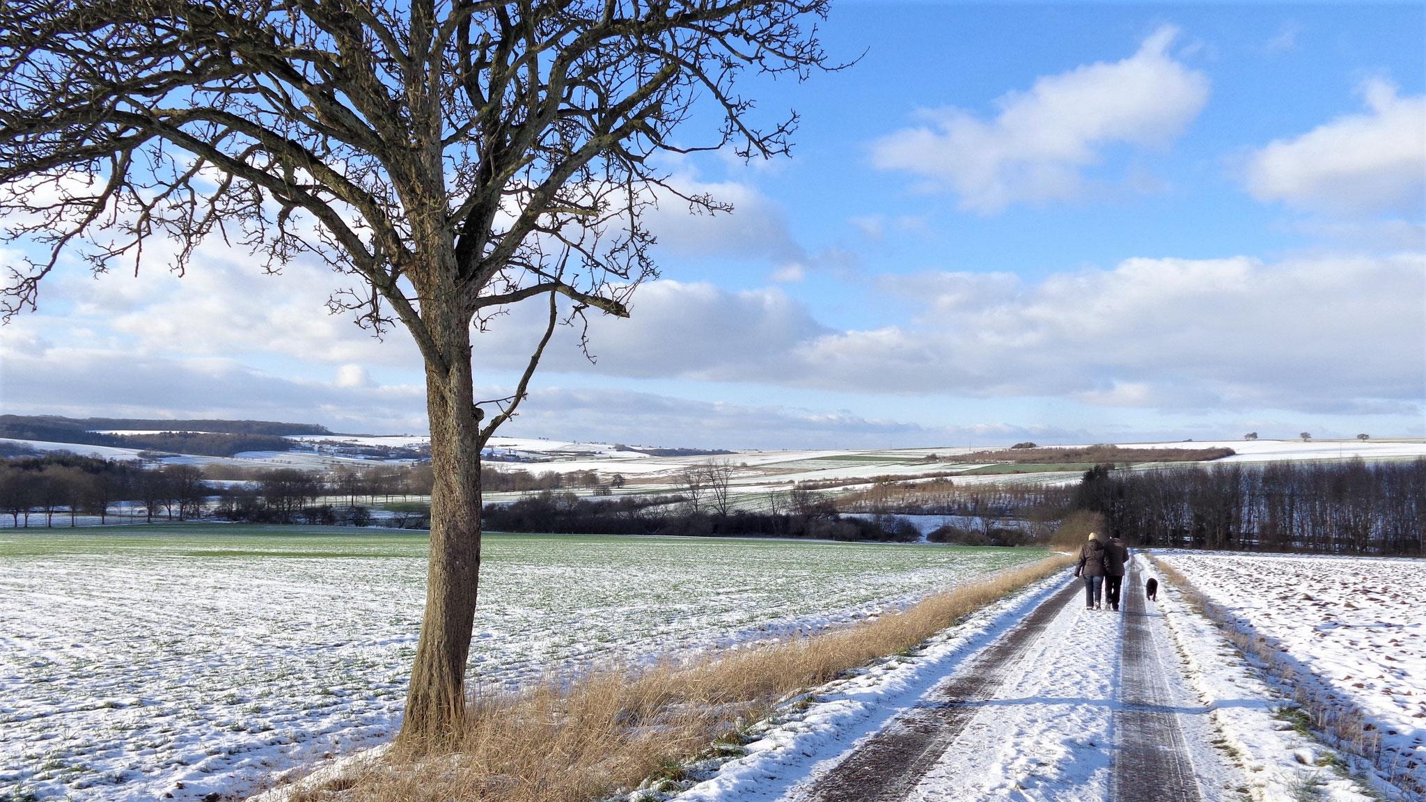 Winterlandschaft an der Grenze bei Bedersdorf