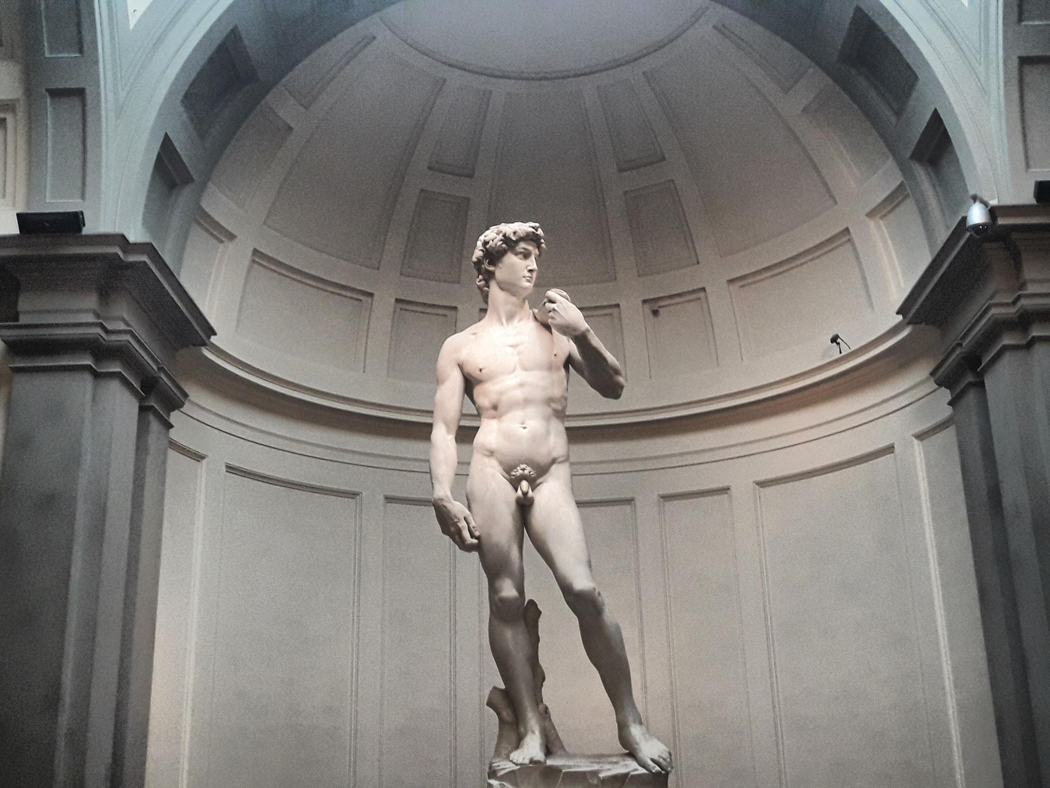 David, Galleria dell'Accademia
