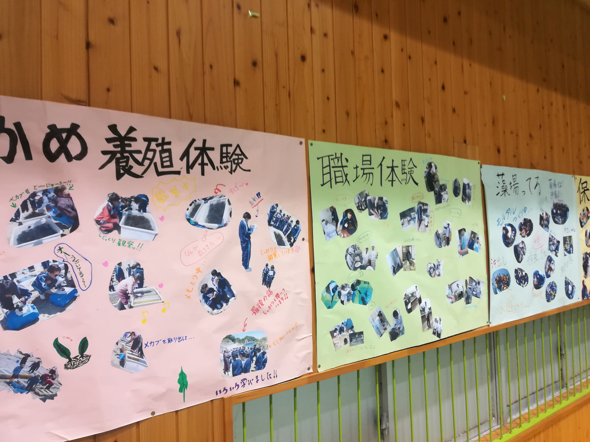 課外学習の写真も掲示されていました。