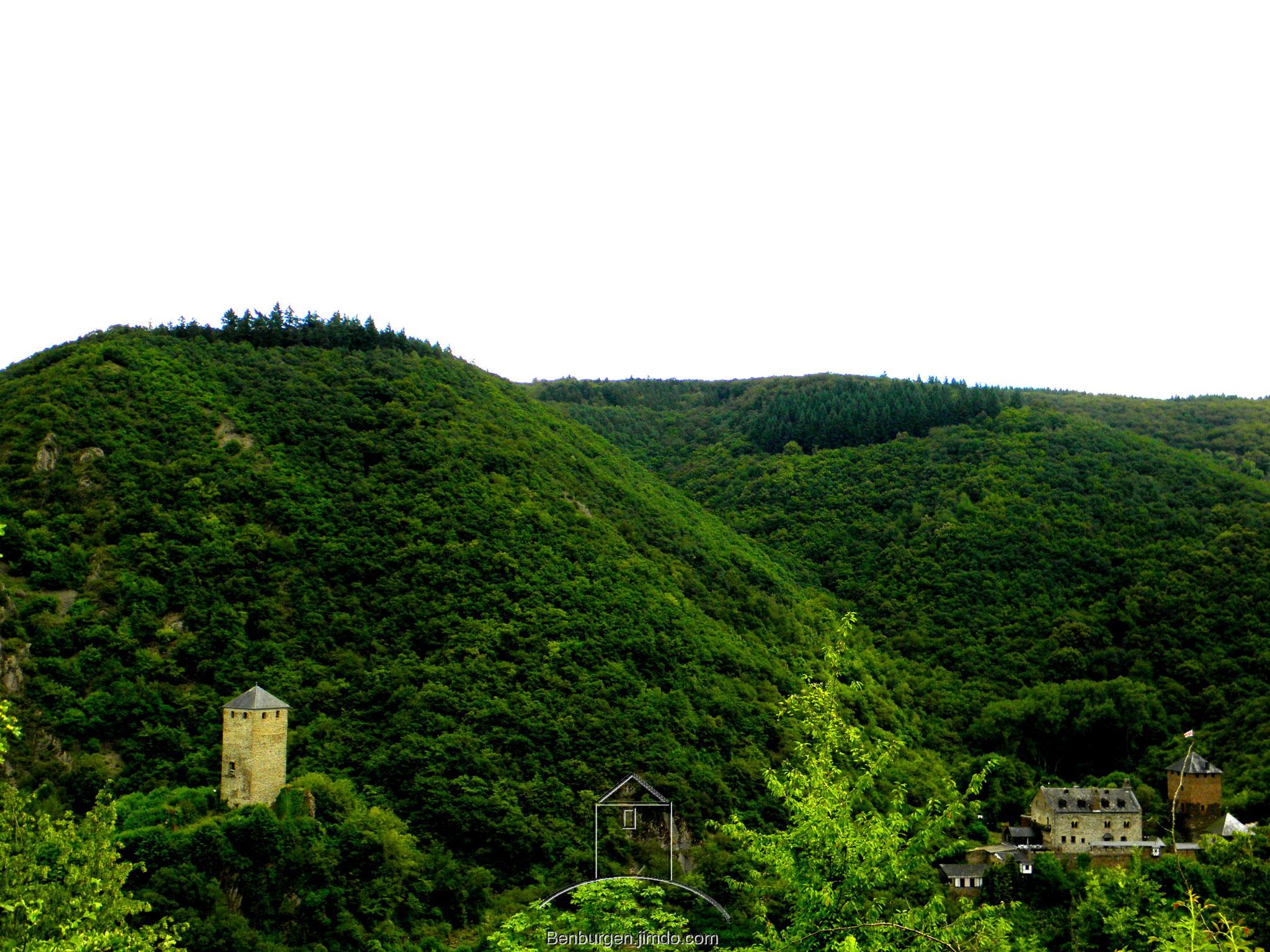 Burg Treis und die Wildburg, Gesamtansicht.