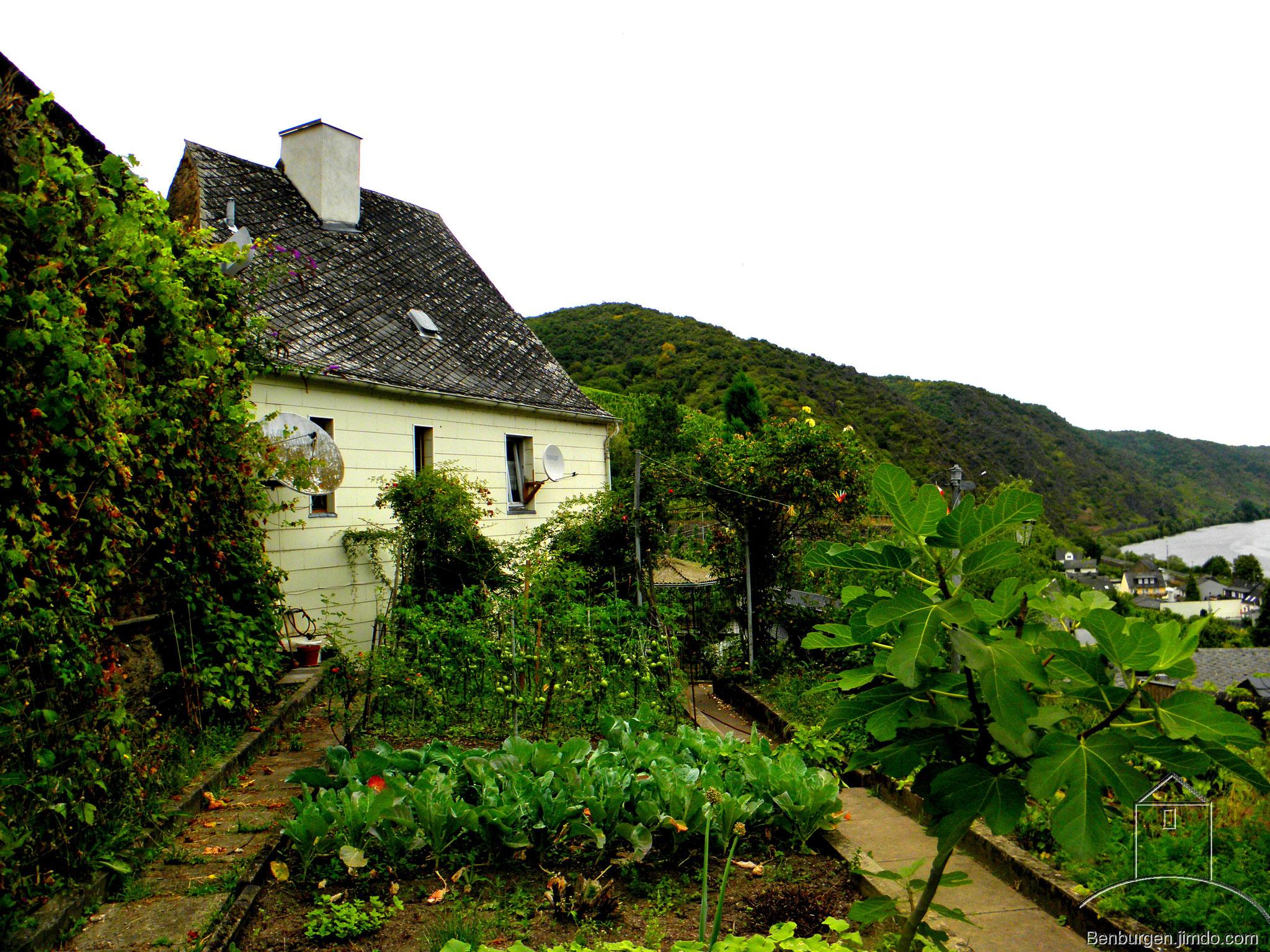 Haus mit Garten.