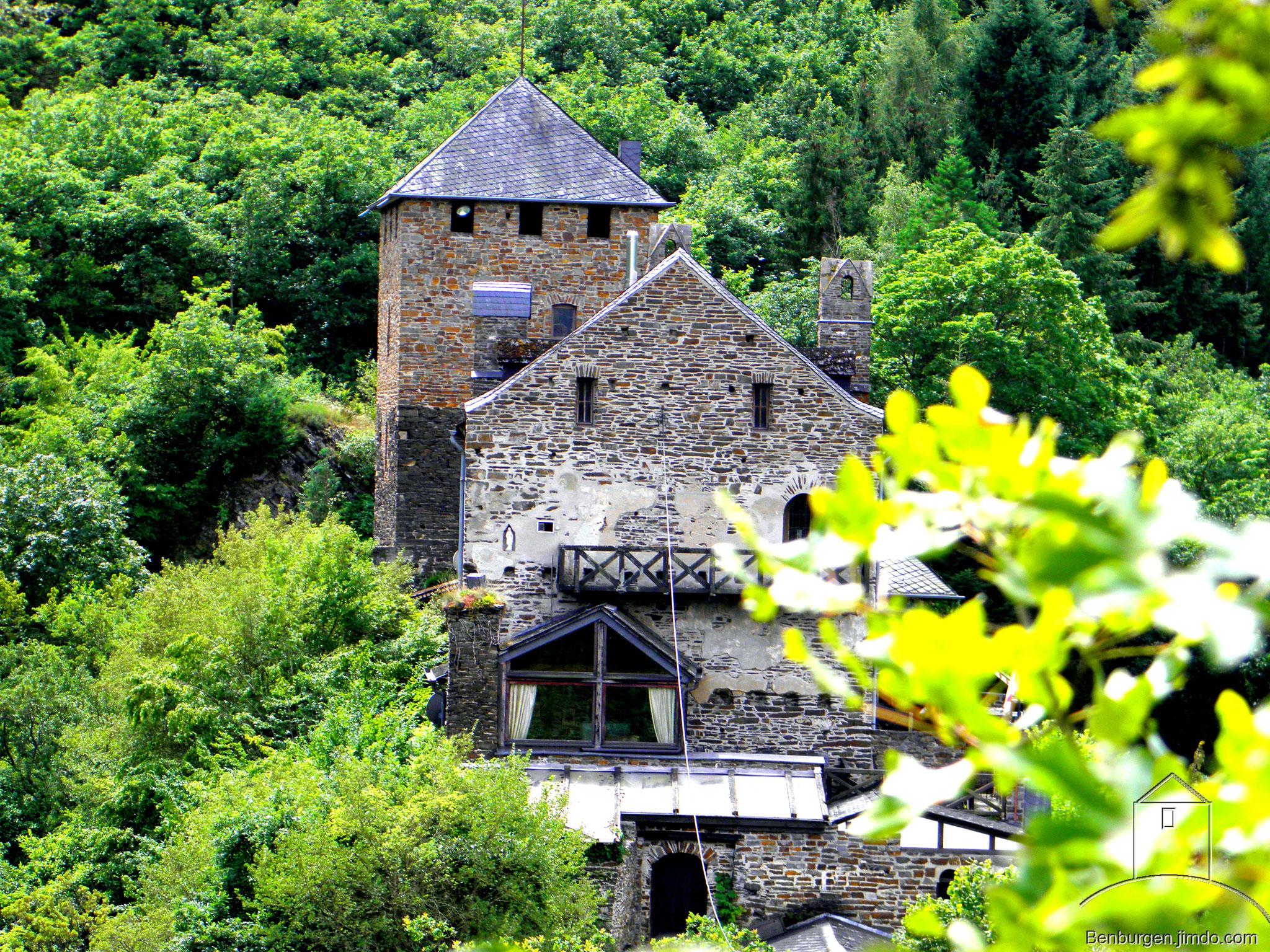 Die Wildburg im Ortsteil Treis.