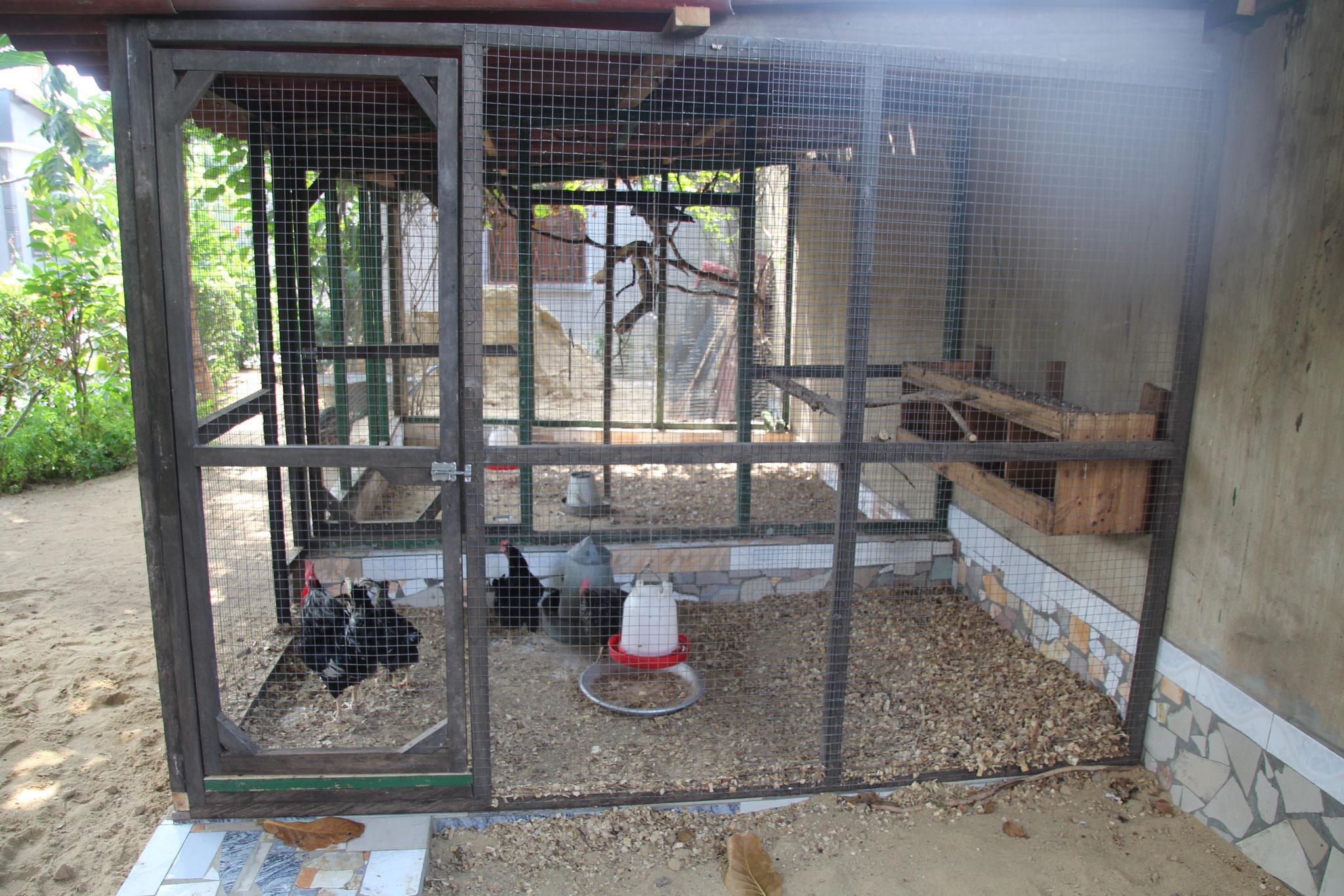 Unser neues nun definitives Käfig der Hühner.