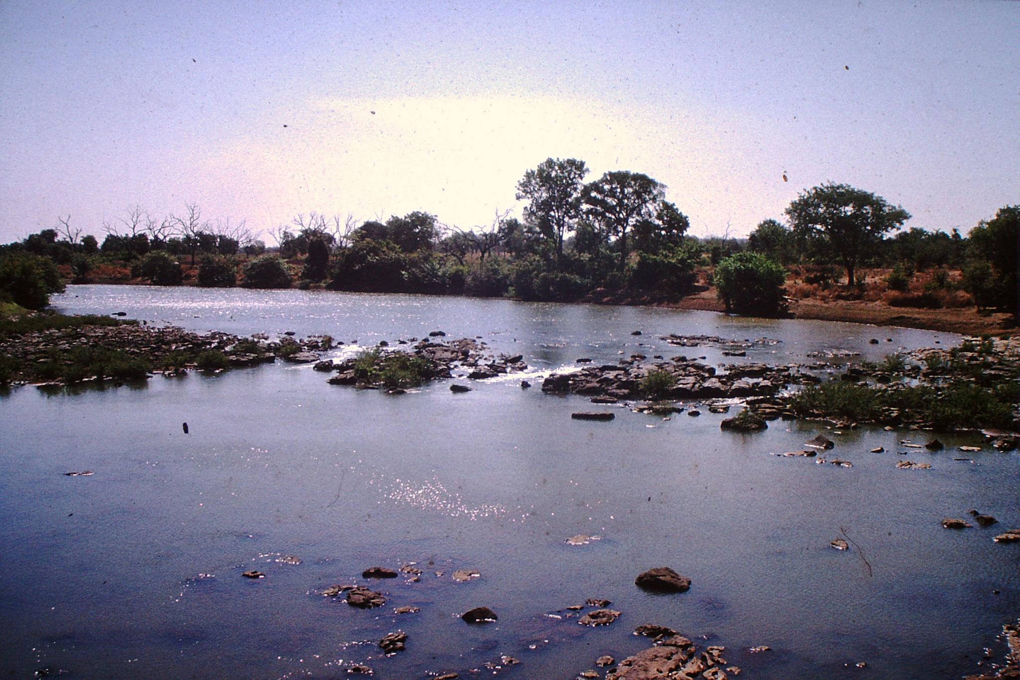 Der Fluss Senegal kurz vor Kayes.