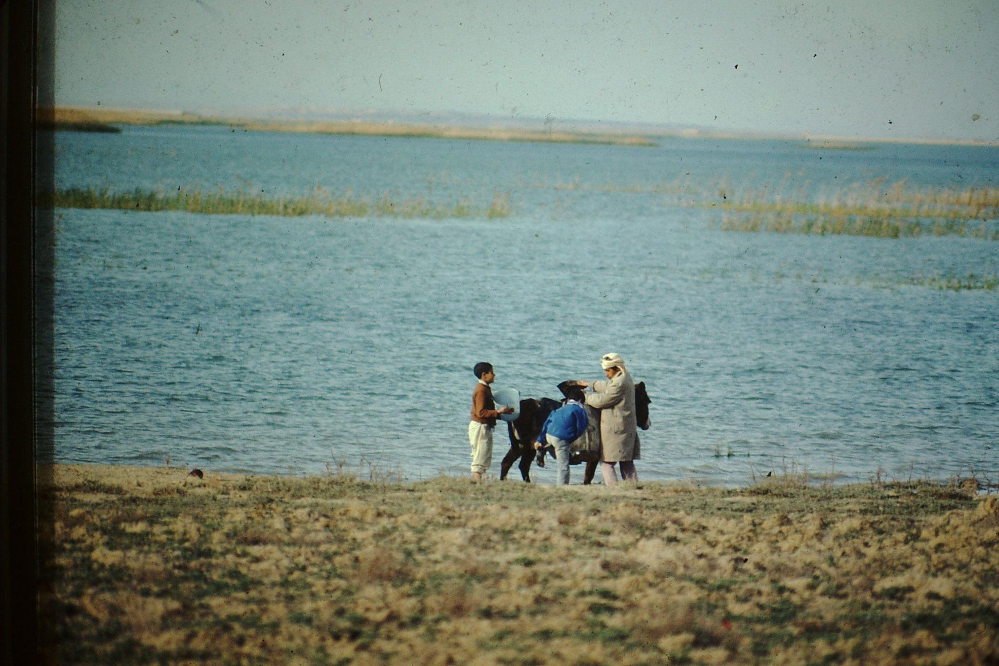 Dieser Touareg holte sich am See von Ksar el Boukhari mit seinen Kindern und dem Esel Wasser.