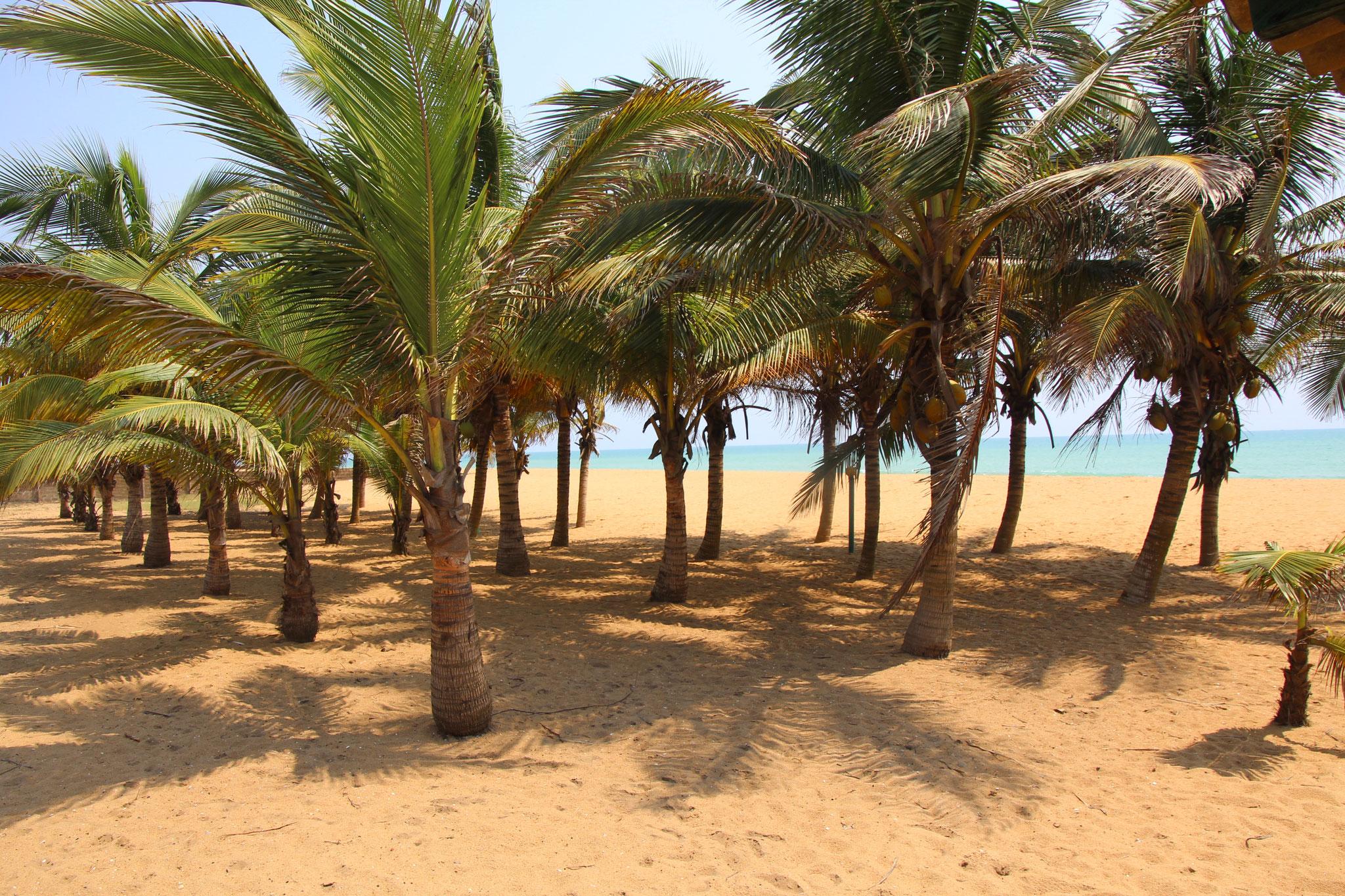 13. Am Strand vom Hotel la Cote du Soleil.
