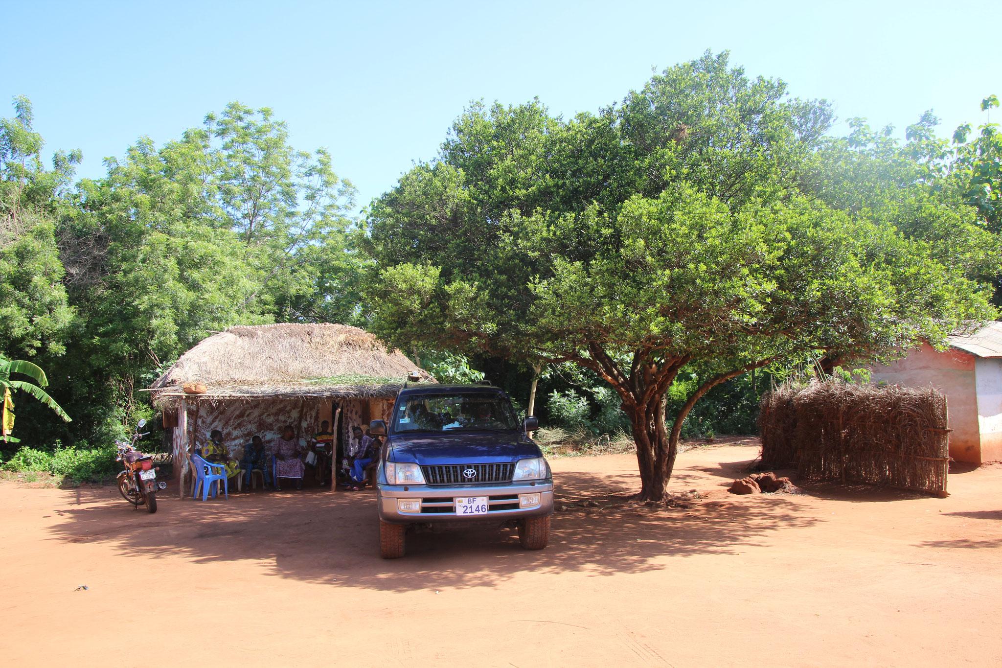Hier wohnte Sandra. Der Mandarinenbaum war das zuhause von Finn.