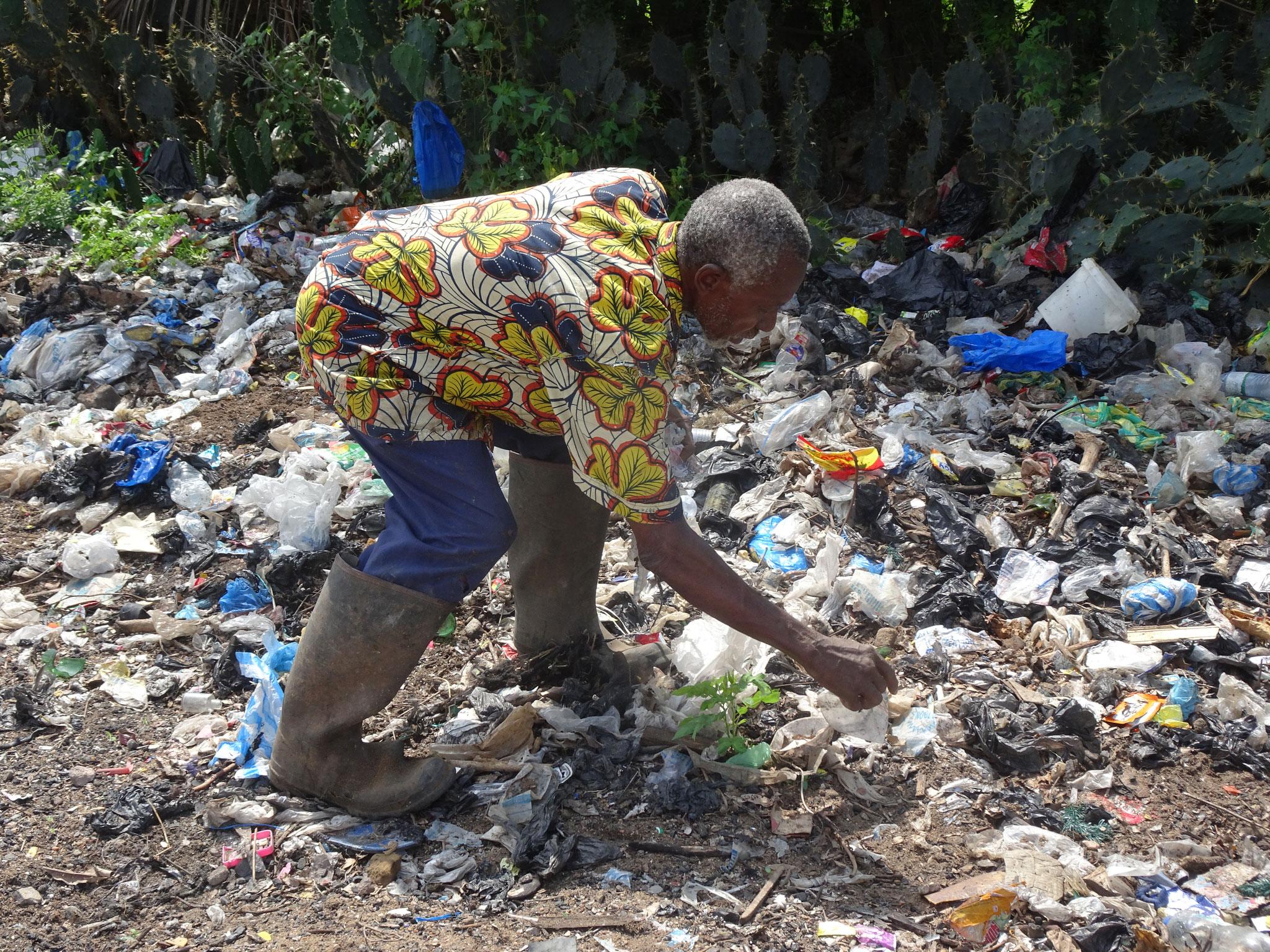 Er sucht Plastiksäckchen zum Rezikeln