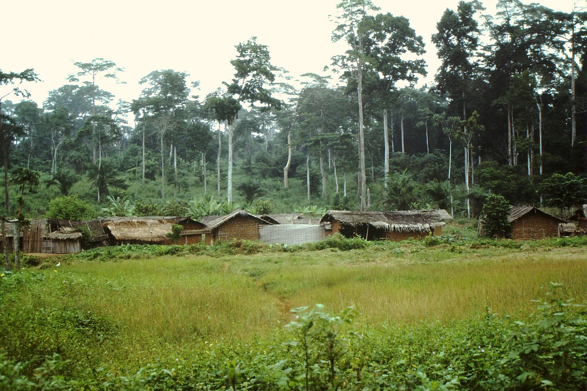 18. Dorf zwischen Abengourou und Abidjan.