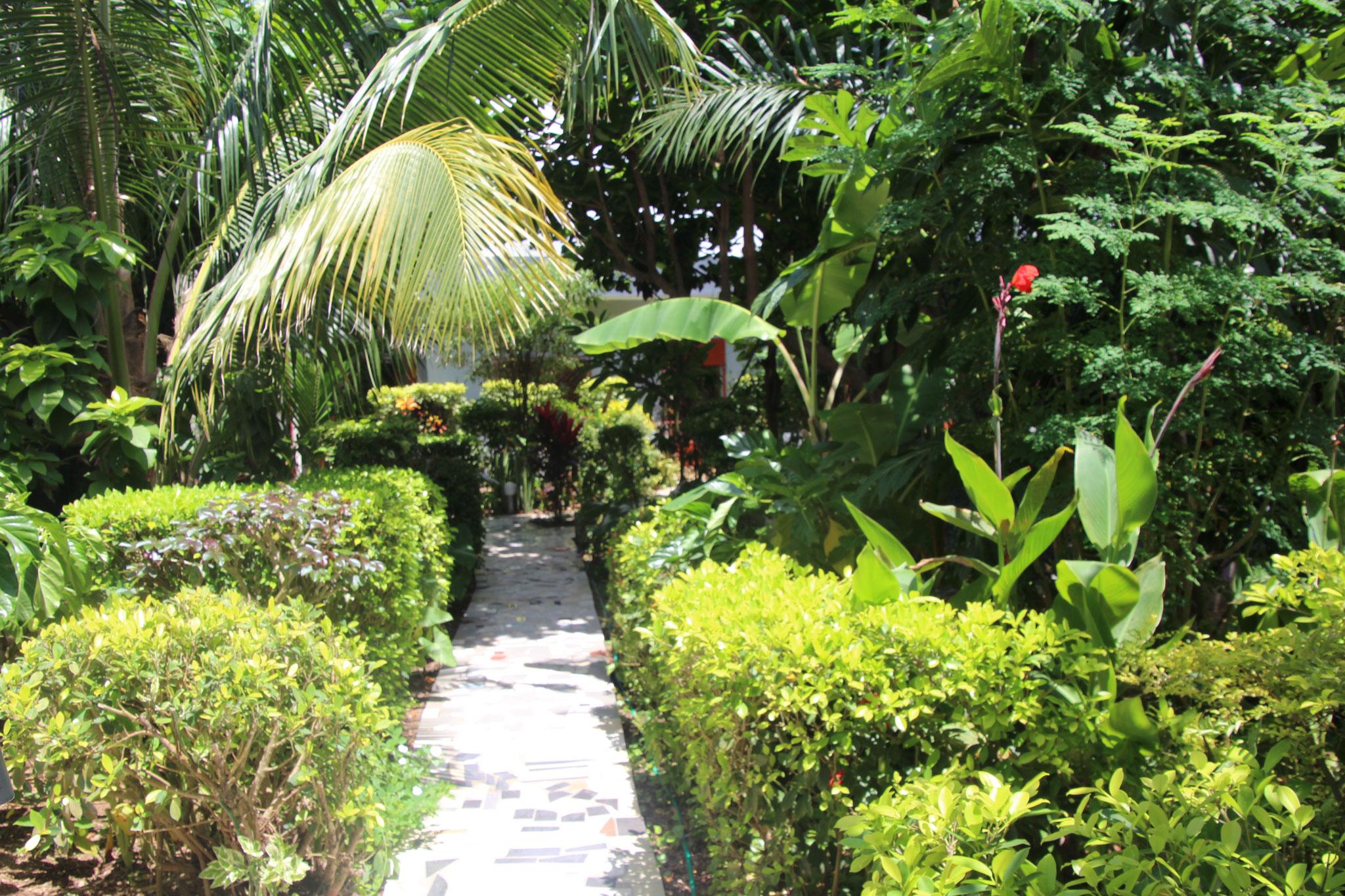Unser Garten.