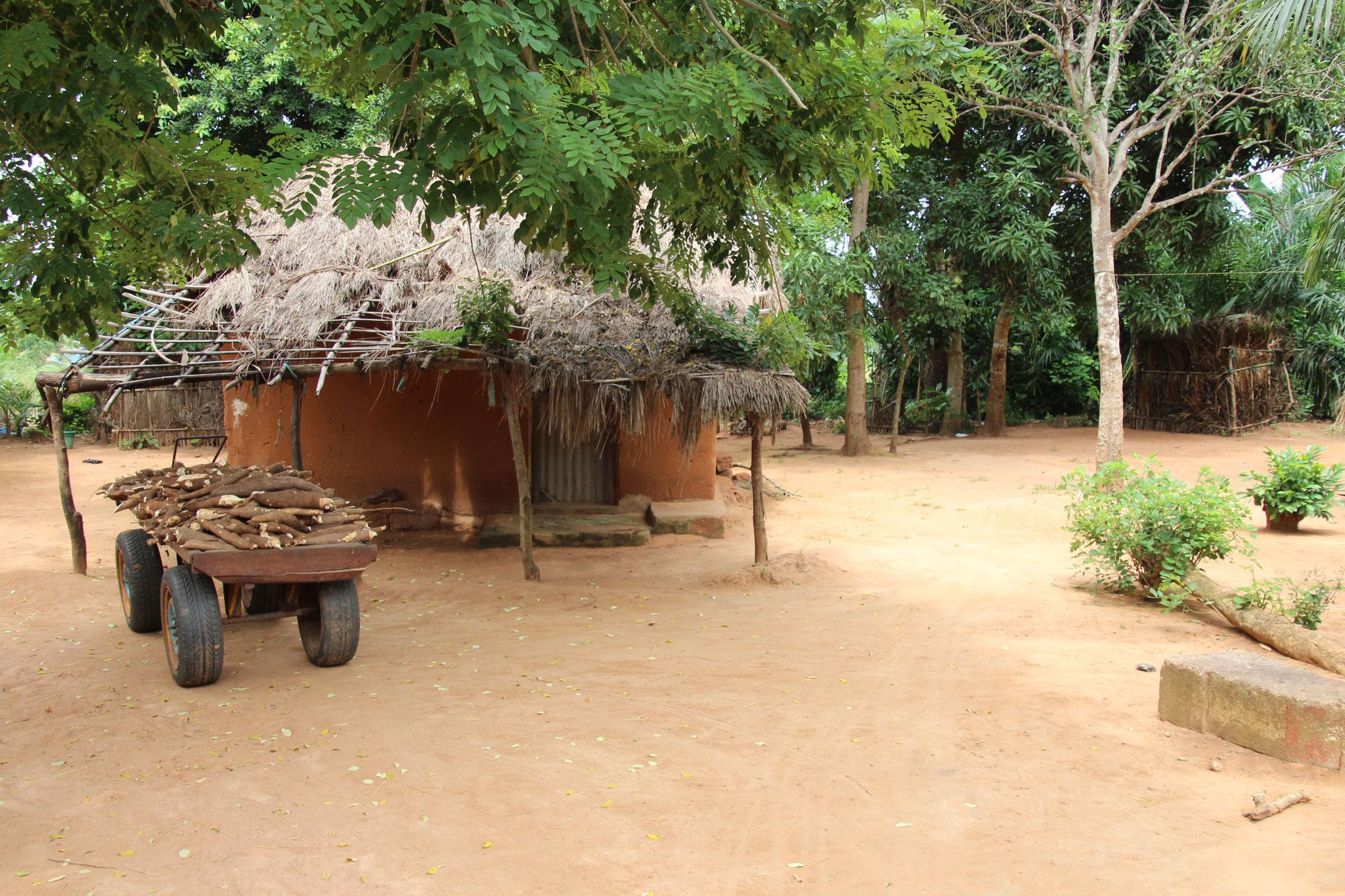 Lehmhütte. Auf dem Pus-Pus liegt Manjok,welcher von den Kindern geerntet wurden.