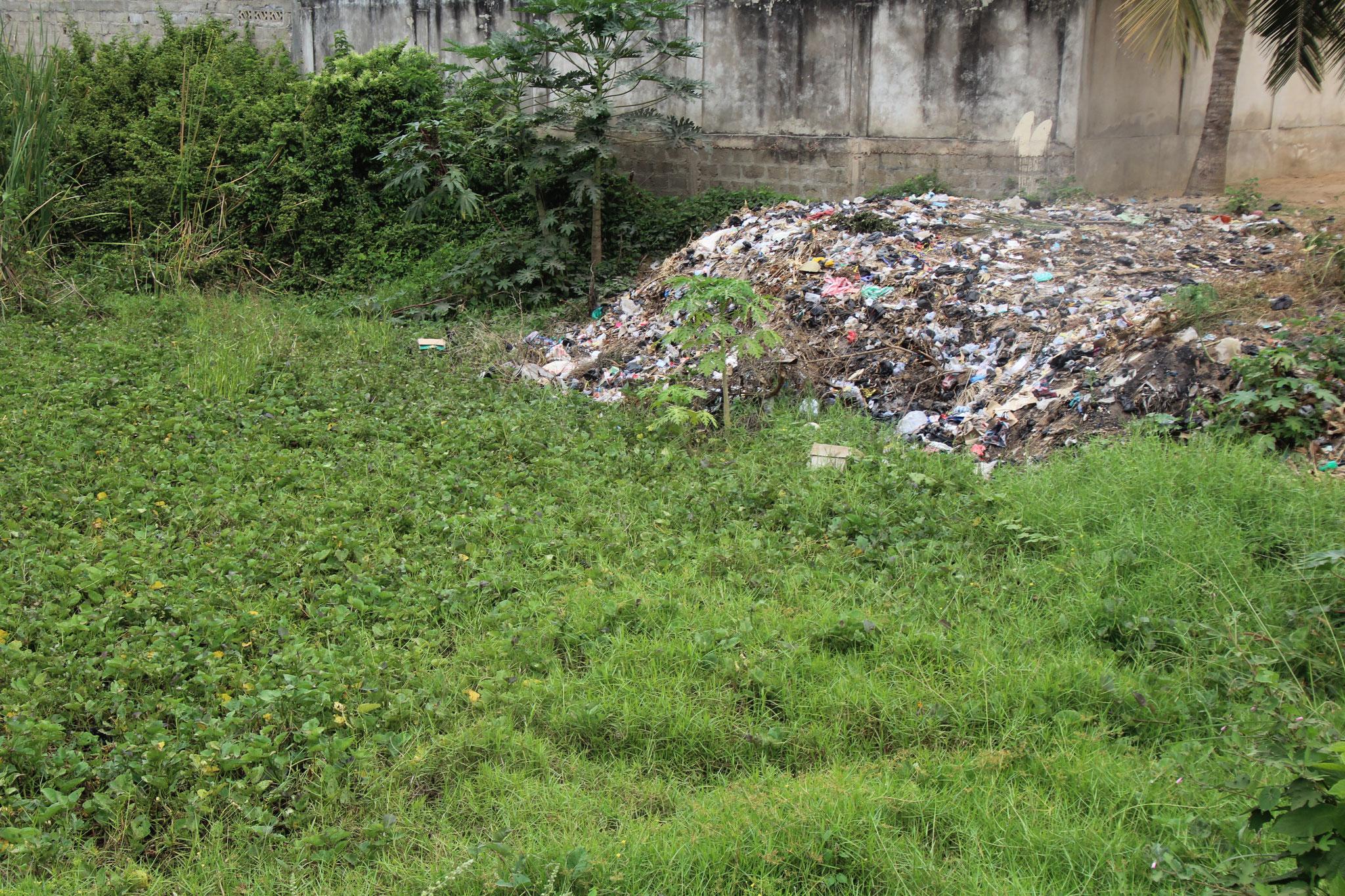 Leider werden diese Biotope zur  Müllentsorgung gebraucht.