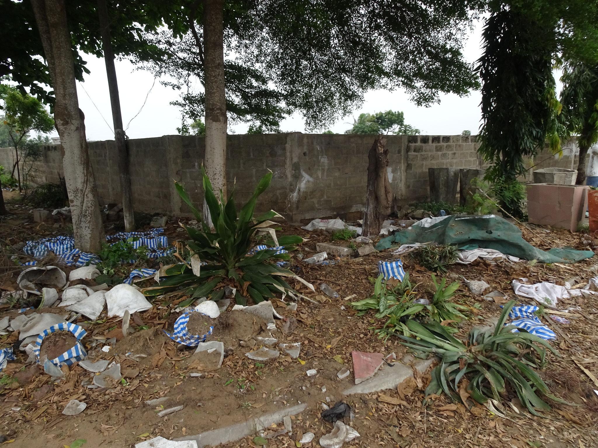 Diese Gärtnerei von Batholome wurde nun zerstört