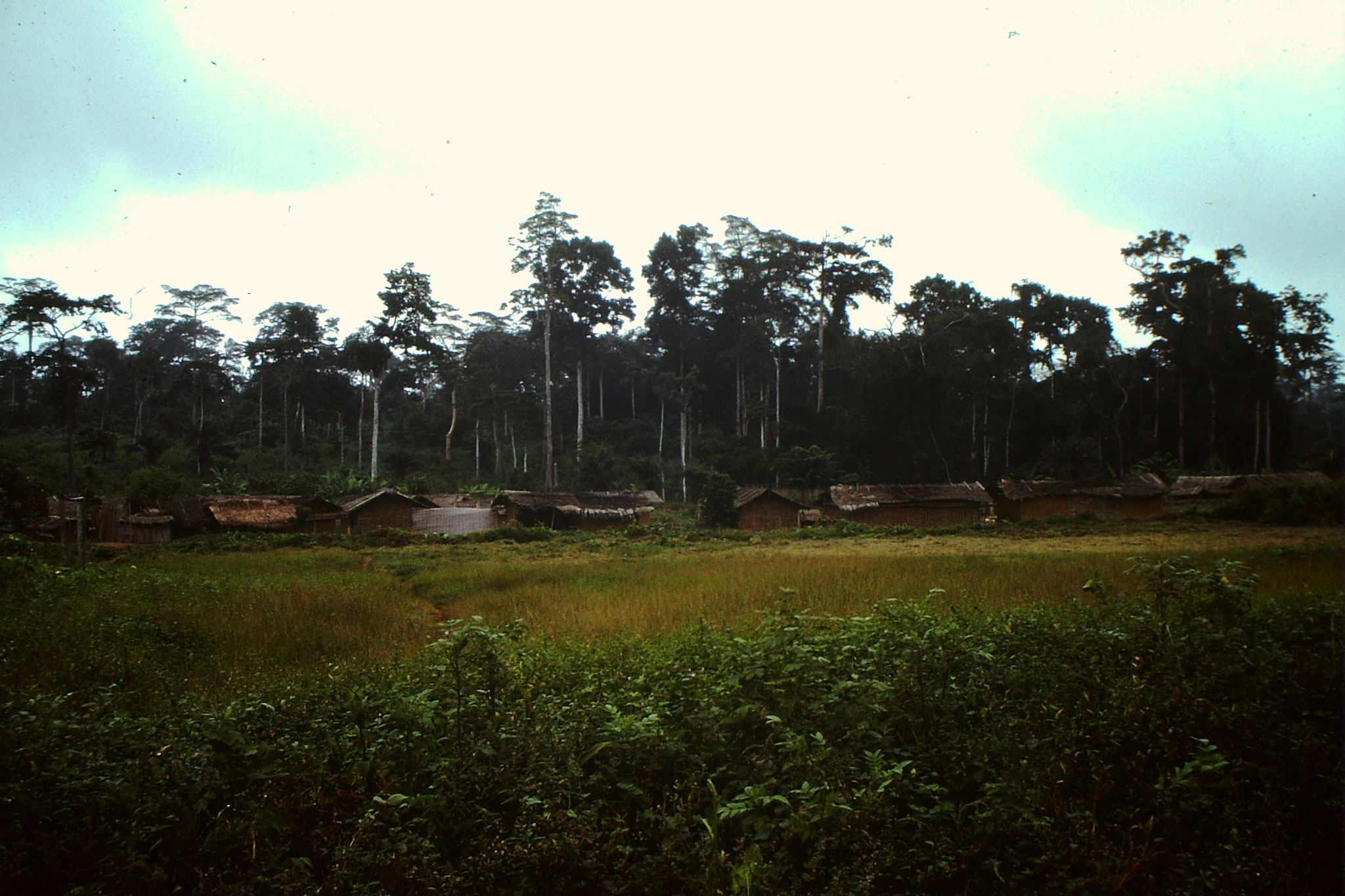 Dorf zwischen Abengourou und Abidjan.