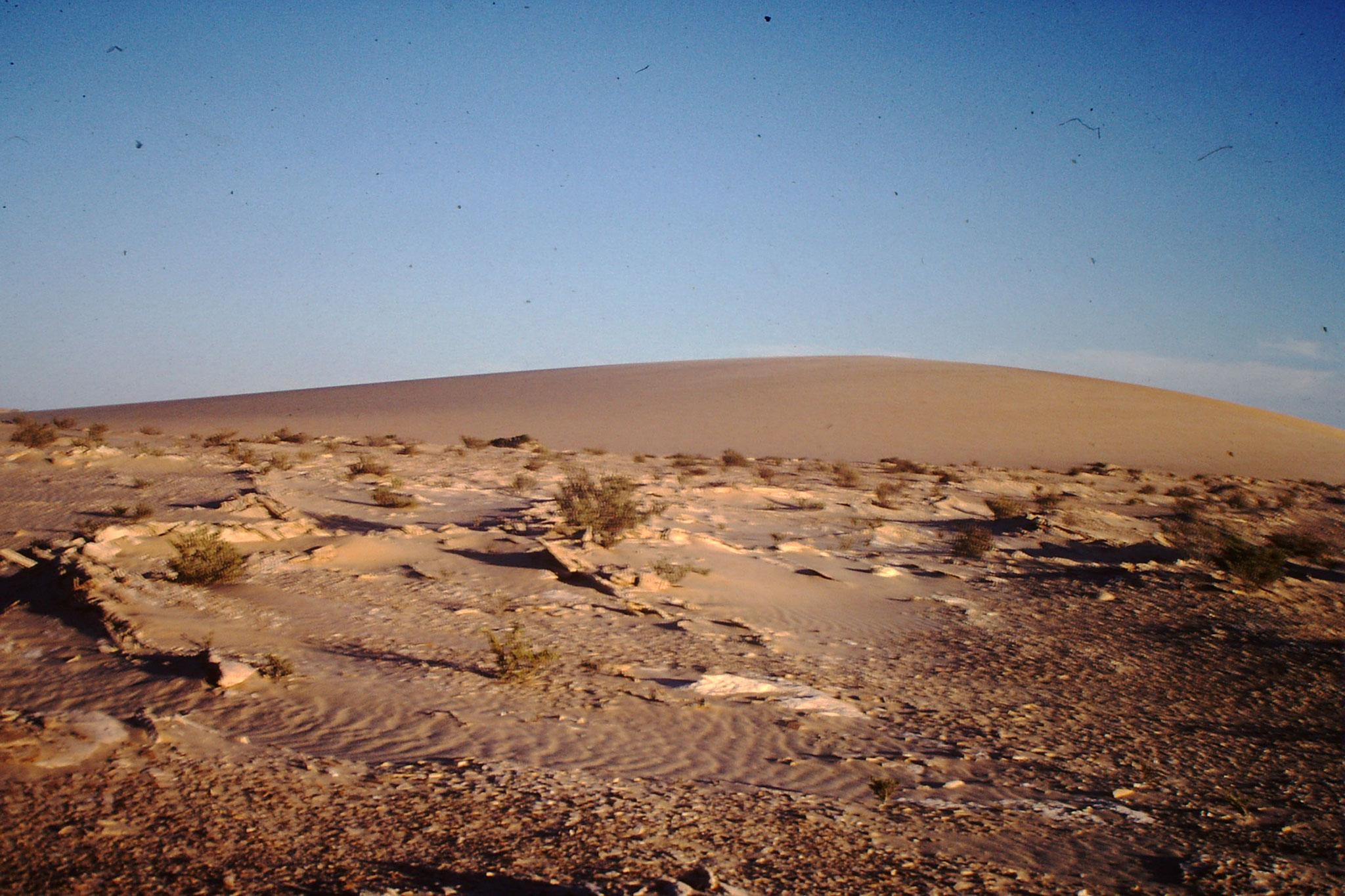Wüstenlandschaft mit Düne.