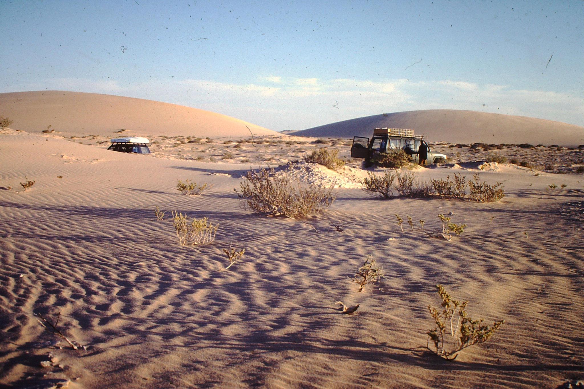Hier Übernachteten wir das 1, Mal in Mauretanien.