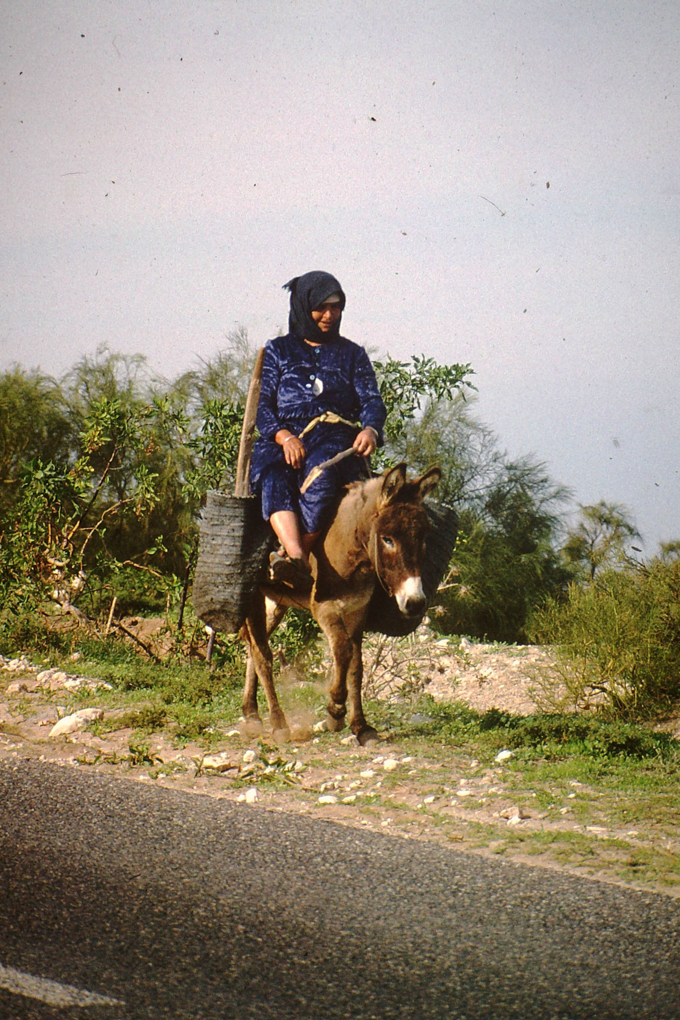 Frau mit Esel.
