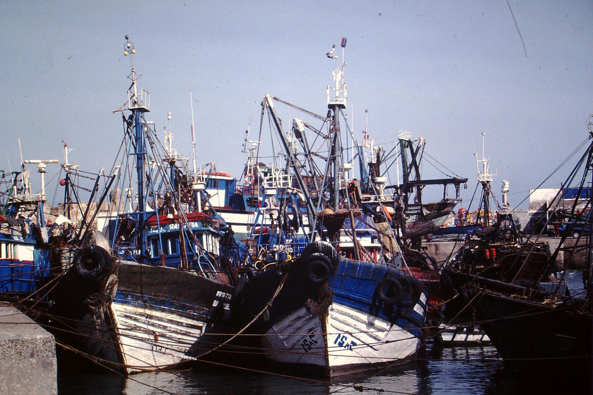 Fischerboote im Hafen von Essauira.